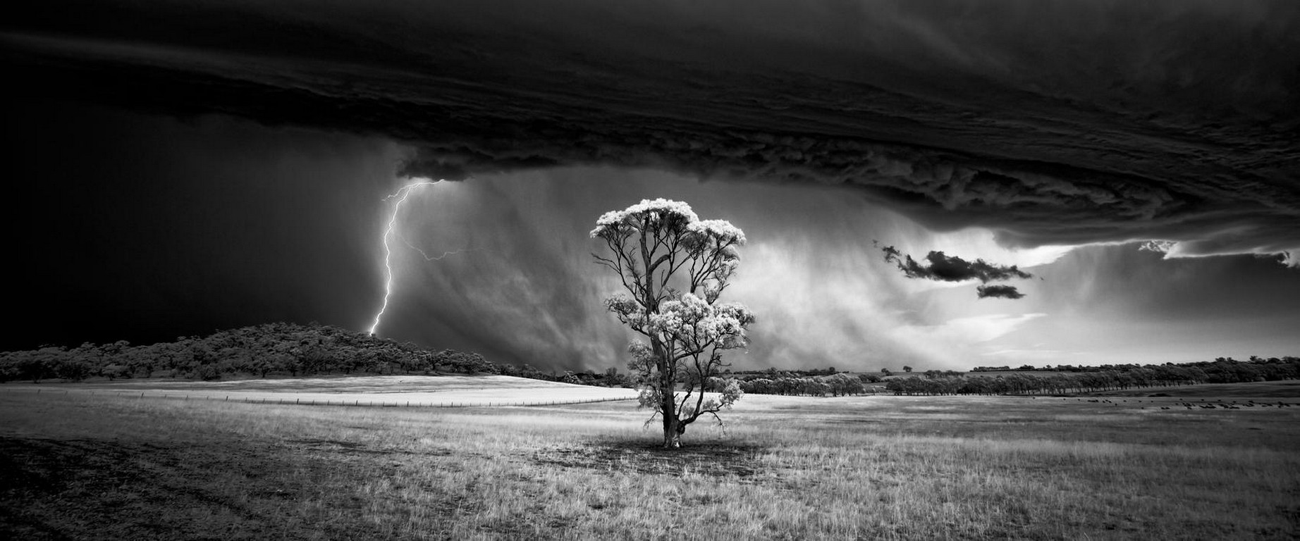 General 1844x768 nature landscape trees field storm lightning supercell (nature) clouds hills wind monochrome panoramas