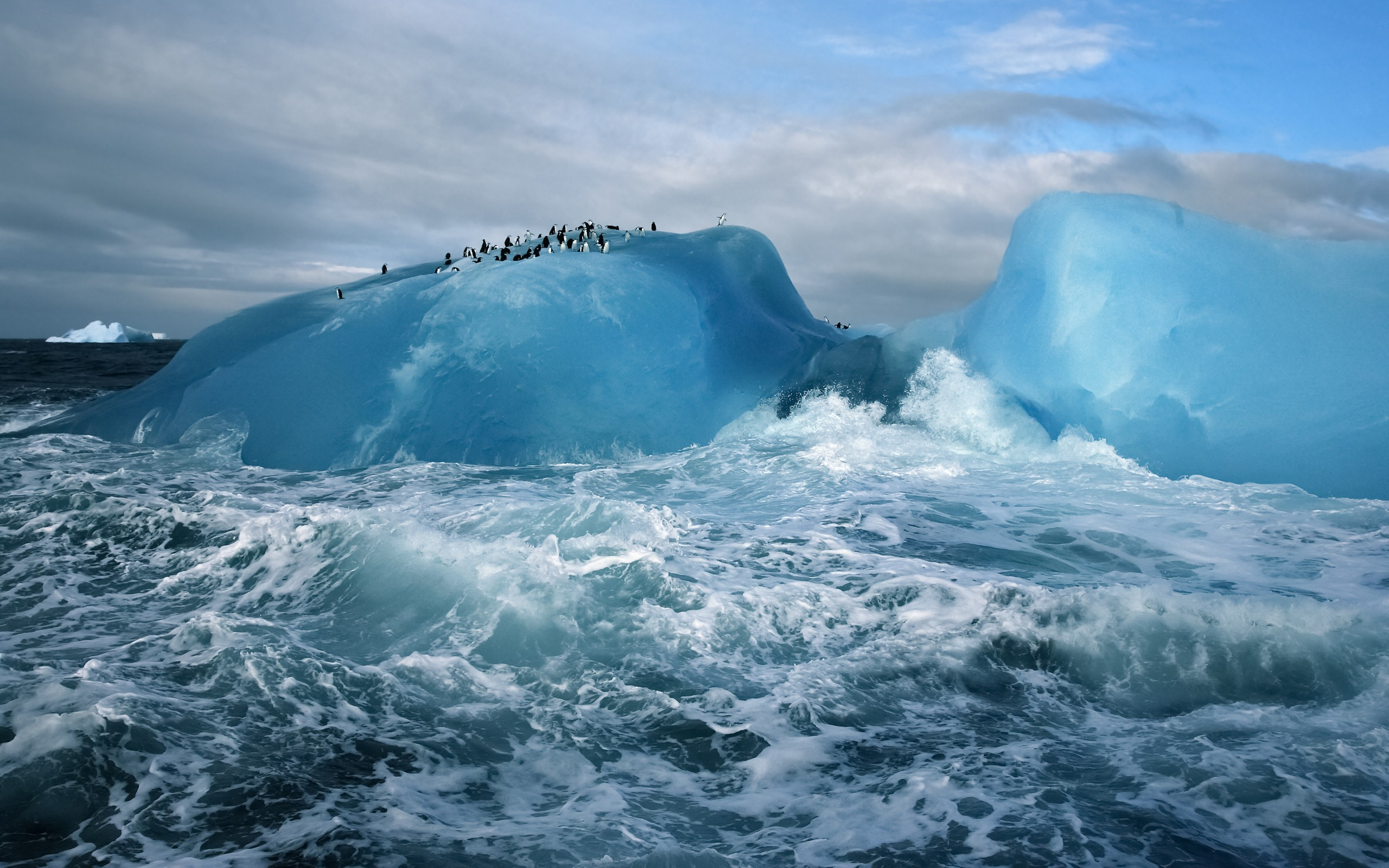 General 2560x1600 nature landscape sea waves Antarctica iceberg glaciers animals penguins snow