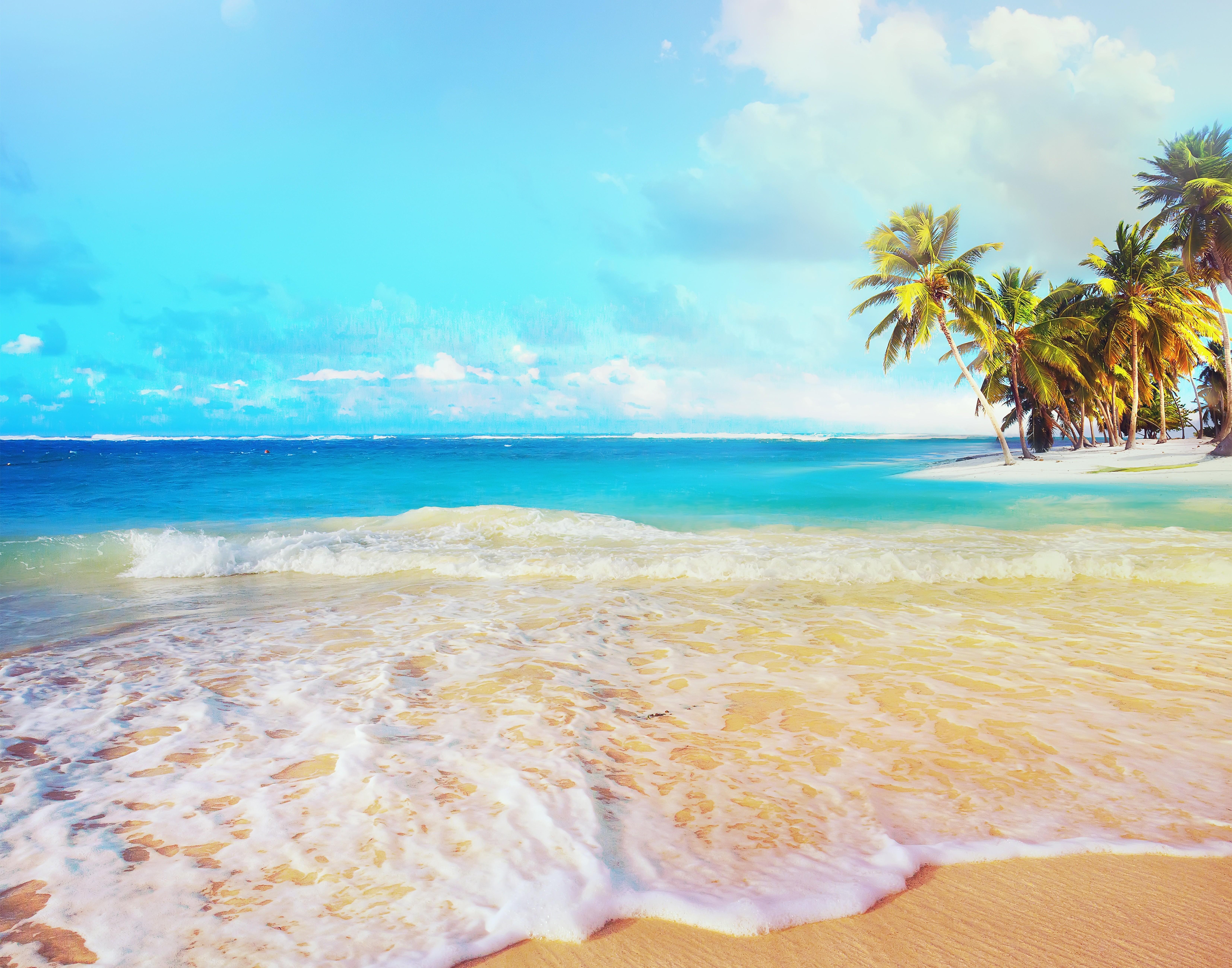 General 6614x5195 landscape beach tropical sea sea foam palm trees