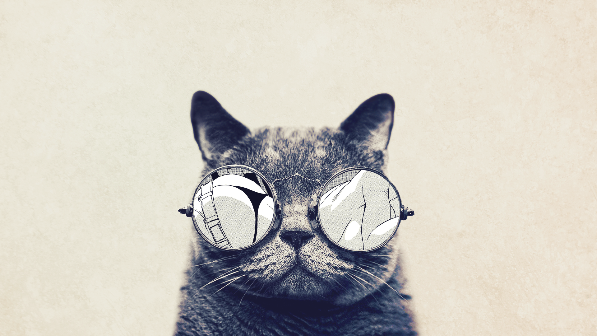 General 1920x1080 cats glasses animals beige frontal view simple background