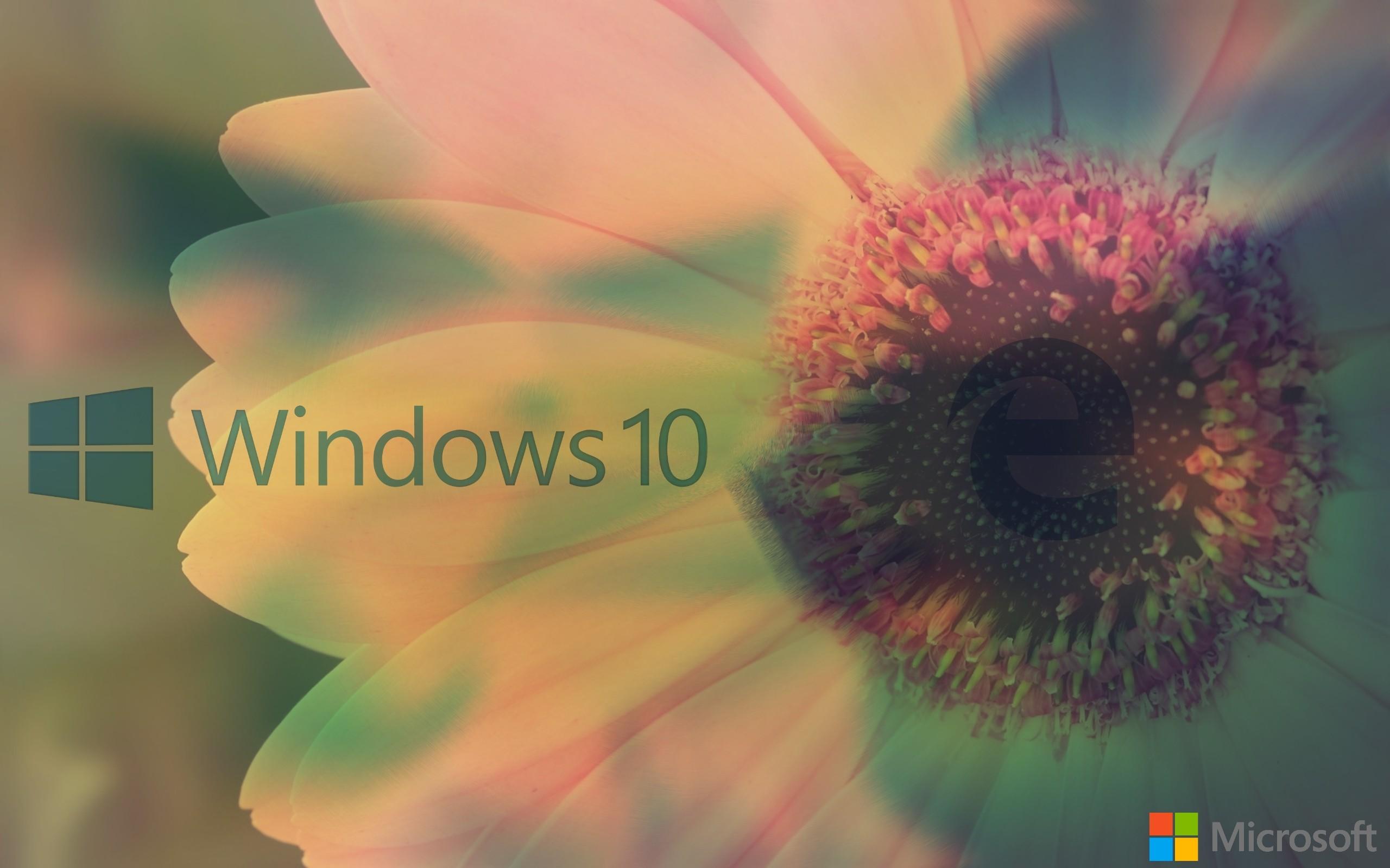 General 2560x1600 window Microsoft Windows Windows 10 MS-DOS Windows XP Windows Vista operating system