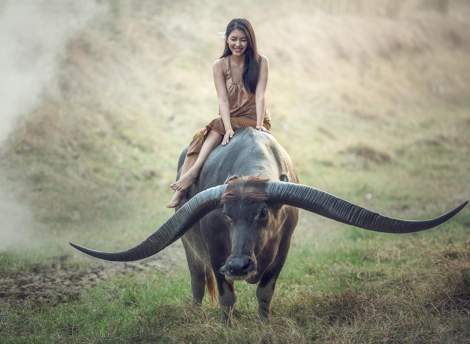People 1600x1170 women outdoors women Asian brunette water buffalo horse riding brown dress flower in hair