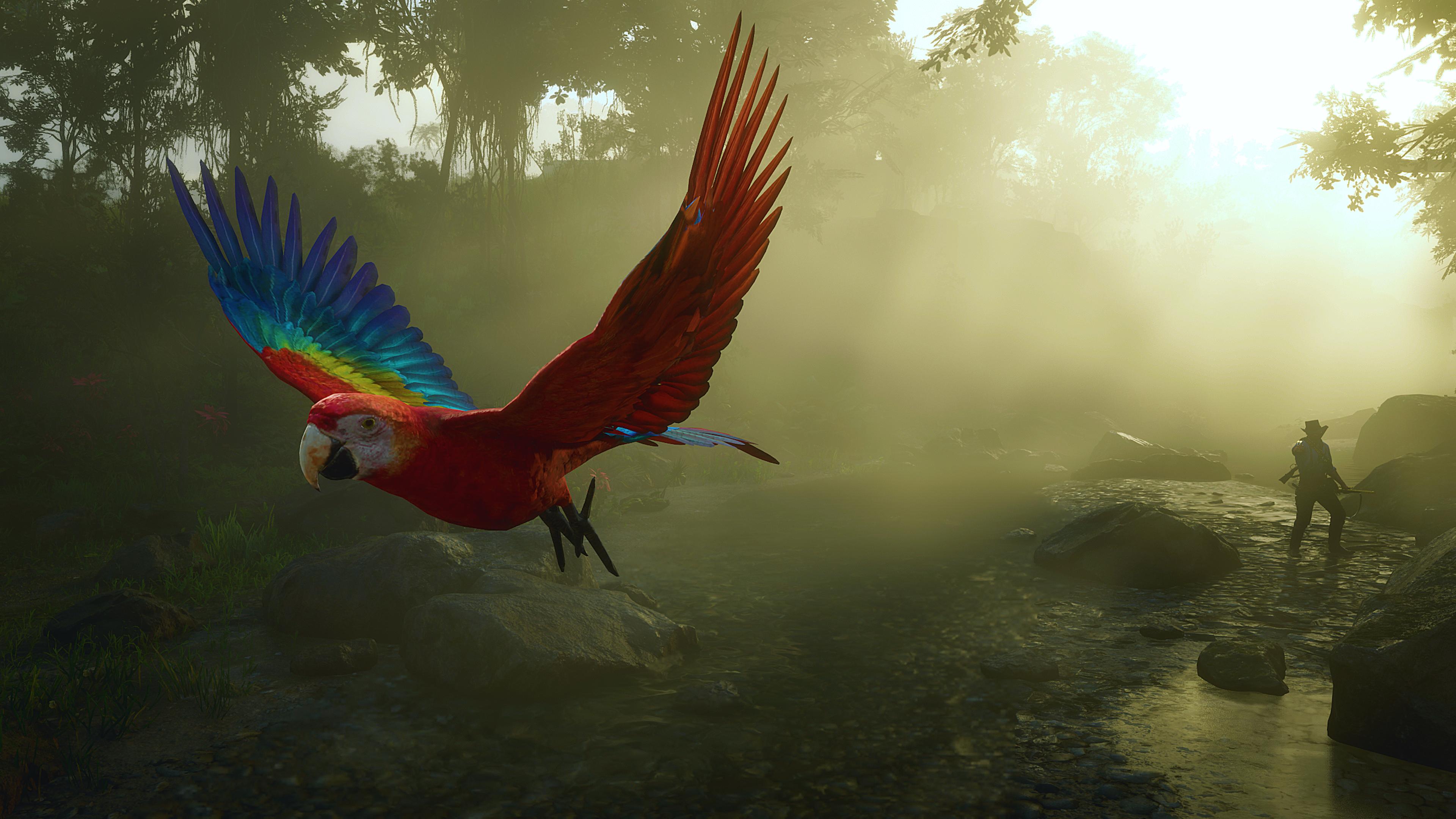 General 3840x2160 Red Dead Redemption Red Dead Redemption 2 landscape parrot animals birds western video games PC gaming