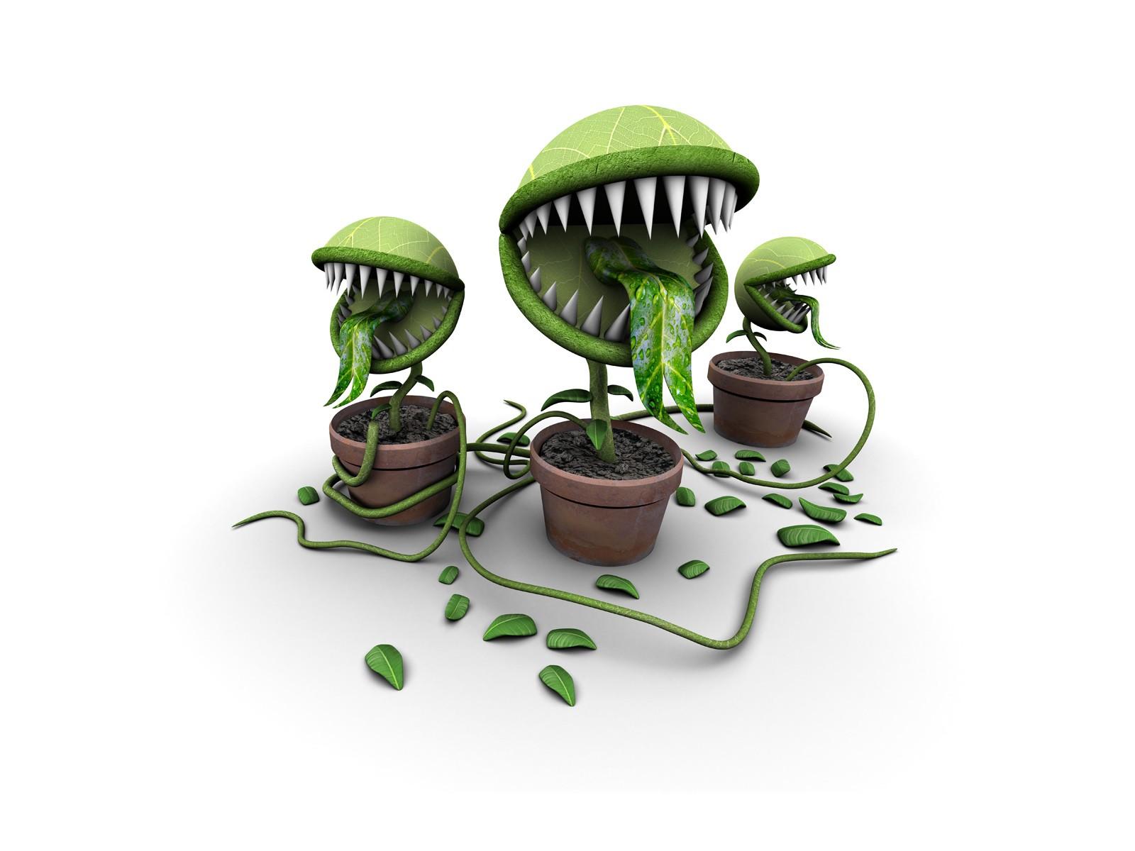 General 1600x1200 plants digital art