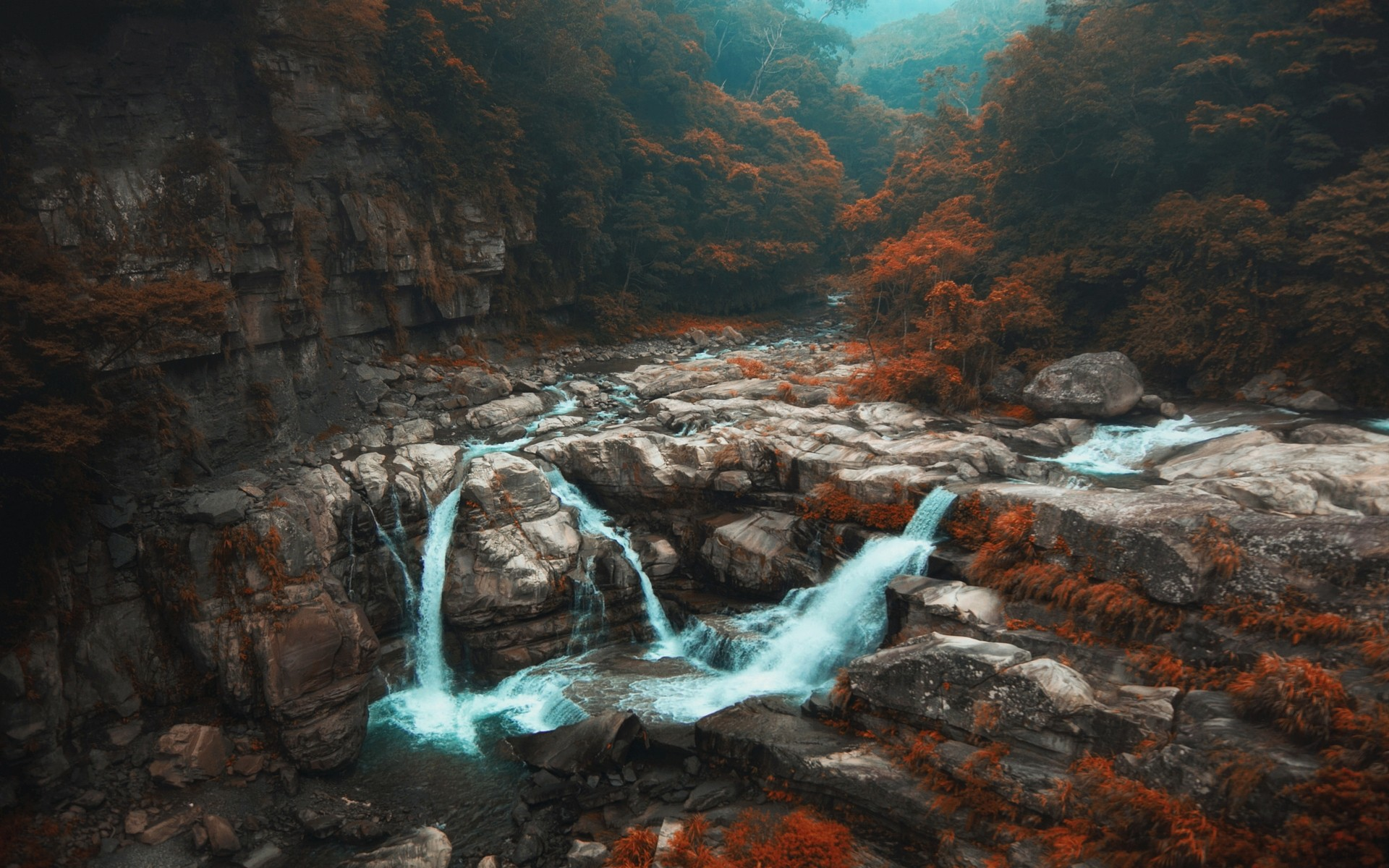 General 1920x1200 nature landscape fall forest waterfall trees river mist shrubs Taiwan