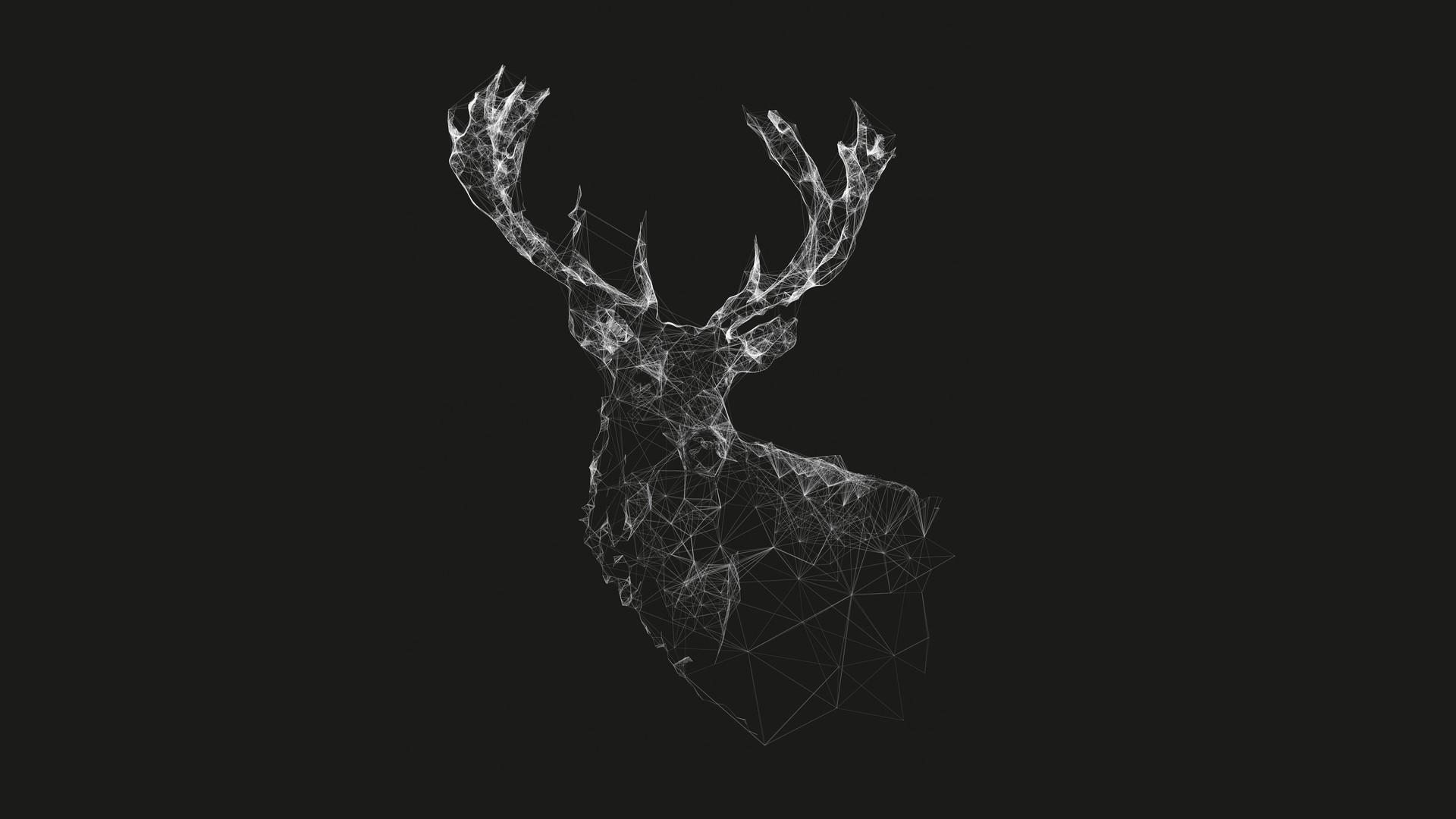 General 1920x1080 deer lines minimalism wireframe