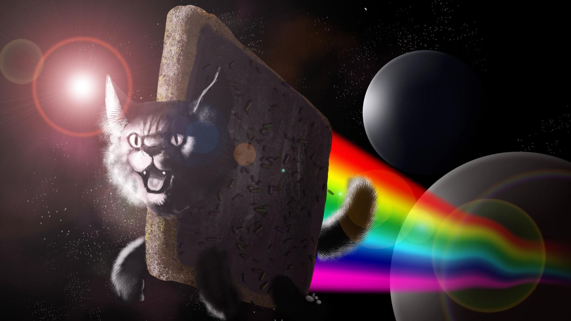 General 1920x1080 Nyan Cat digital art space art cats animals colorful humor LSD rainbows