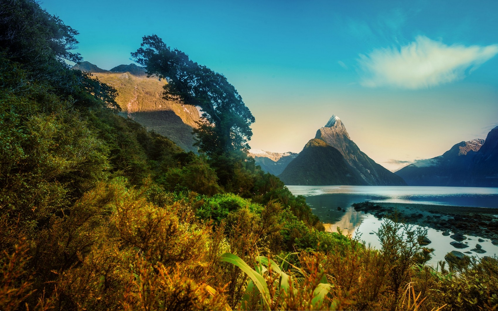 General 1700x1063 nature landscape morning mountains fjord snowy peak Milford Sound New Zealand trees shrubs