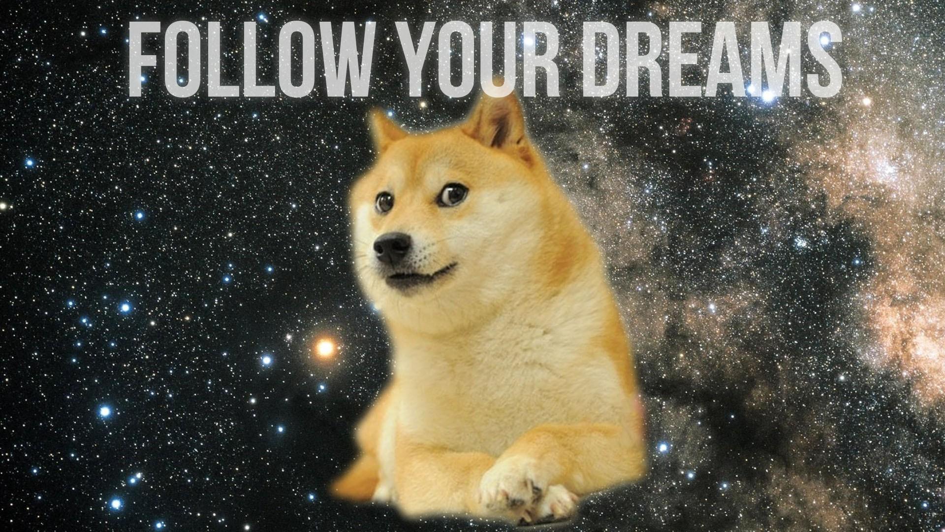 General 1920x1080 doge inspirational animals motivational memes