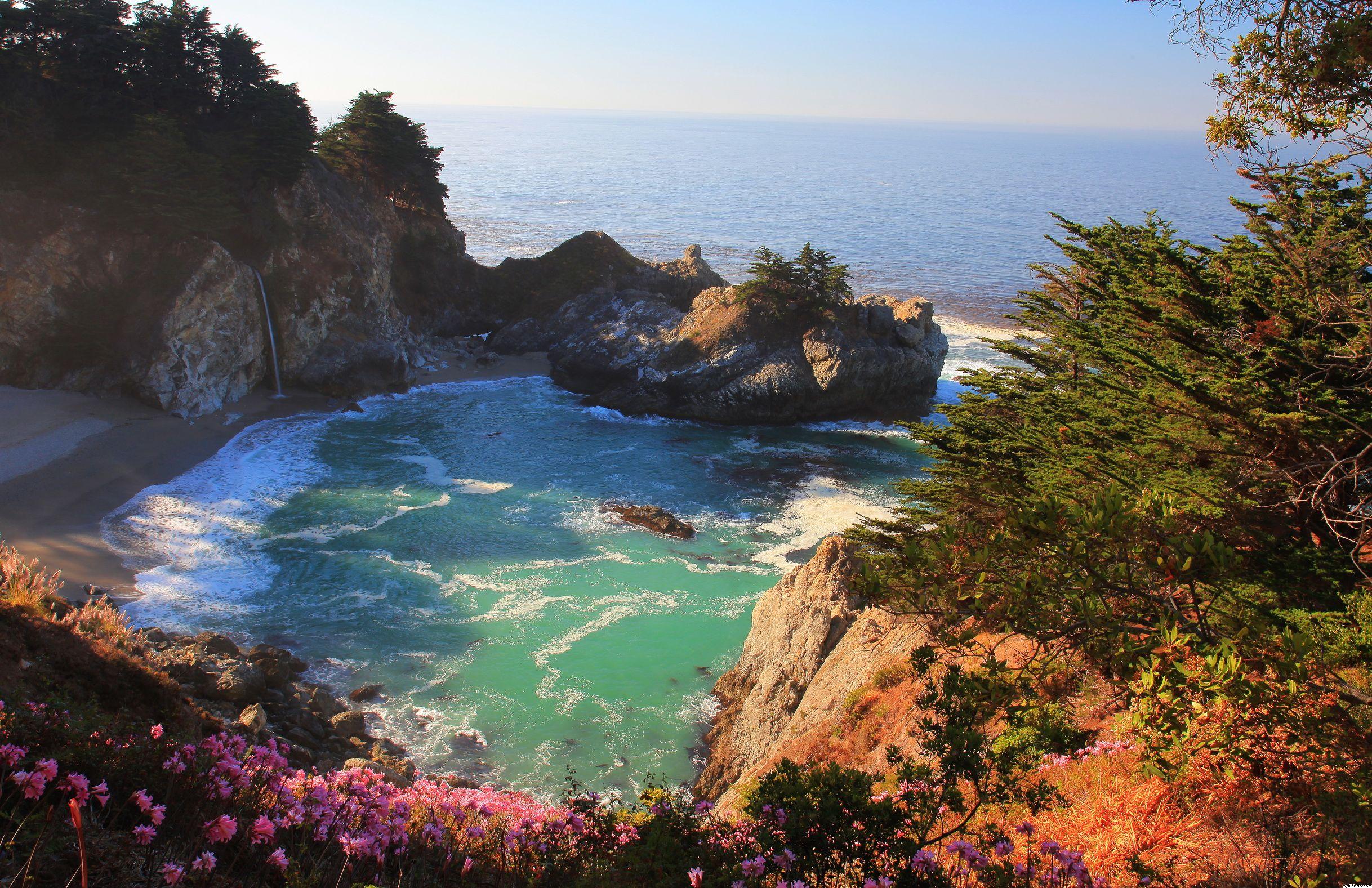 General 2436x1577 beach nature trees sea flowers plants landscape