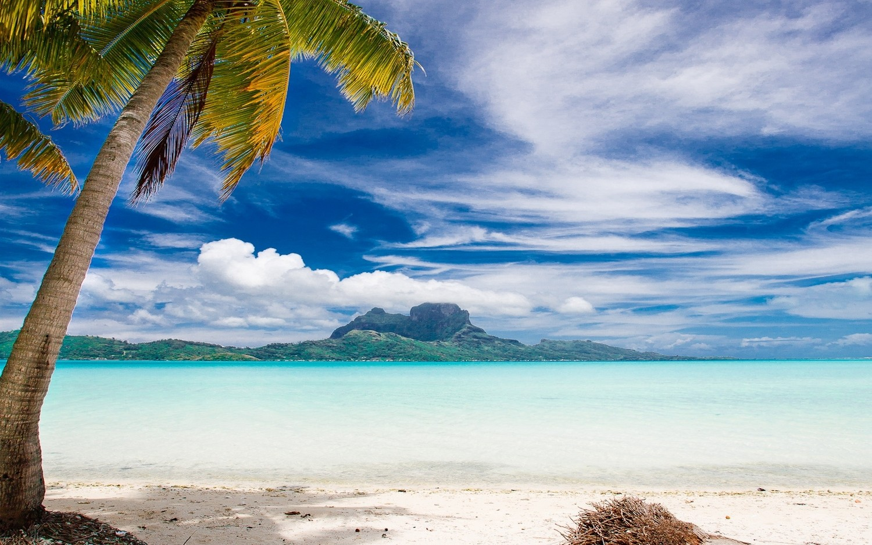 General 1500x938 landscape nature Bora Bora palm trees beach sea tropical island summer mountains clouds sand vacation