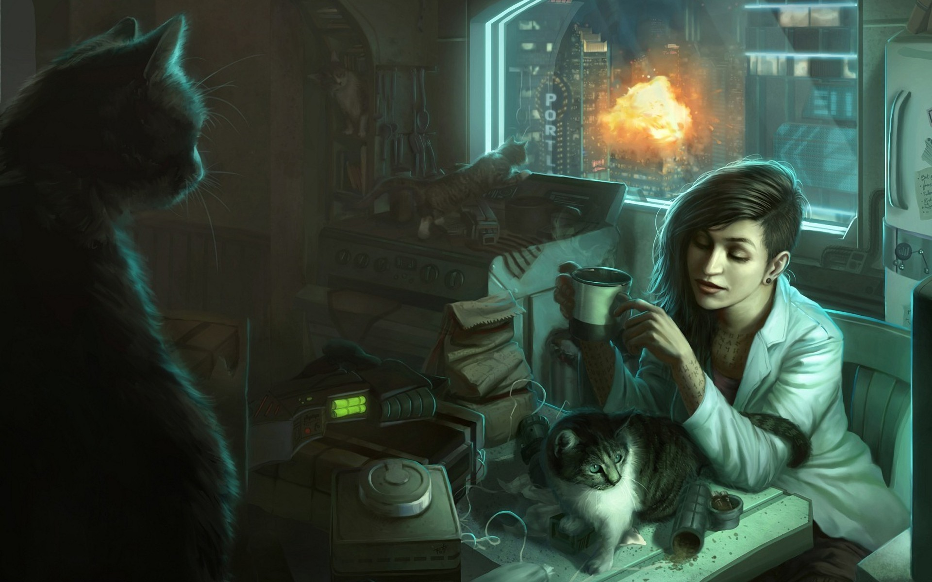 General 1920x1200 cats women artwork animals mammals indoors explosion brunette fire inked girls terrorist women indoors