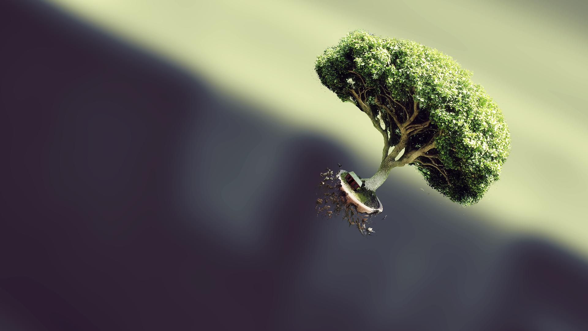 General 1920x1080 trees simple background bonsai floating blurred digital art bokeh CGI render nature artwork