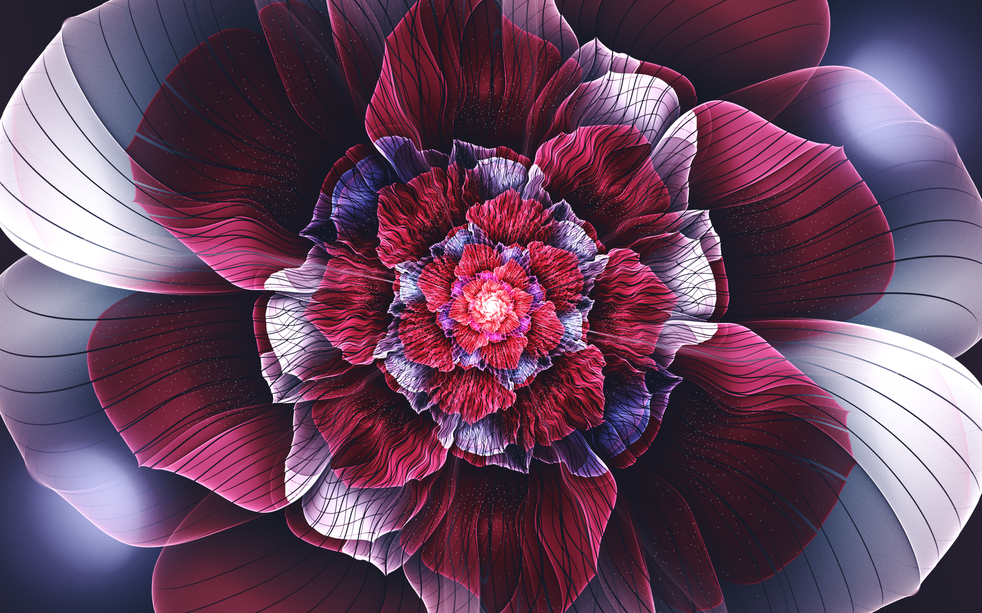 General 1920x1200 fractal abstract fractal flowers flowers symmetry petals digital art