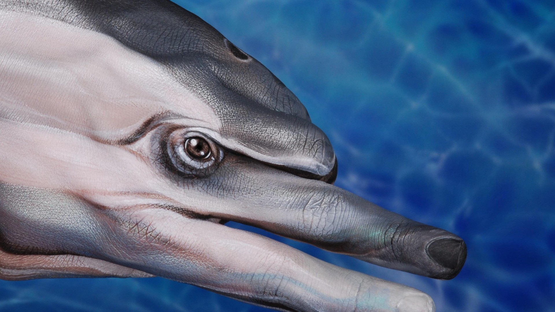 General 1920x1080 animals dolphin hands fingers body paint eyes blue water