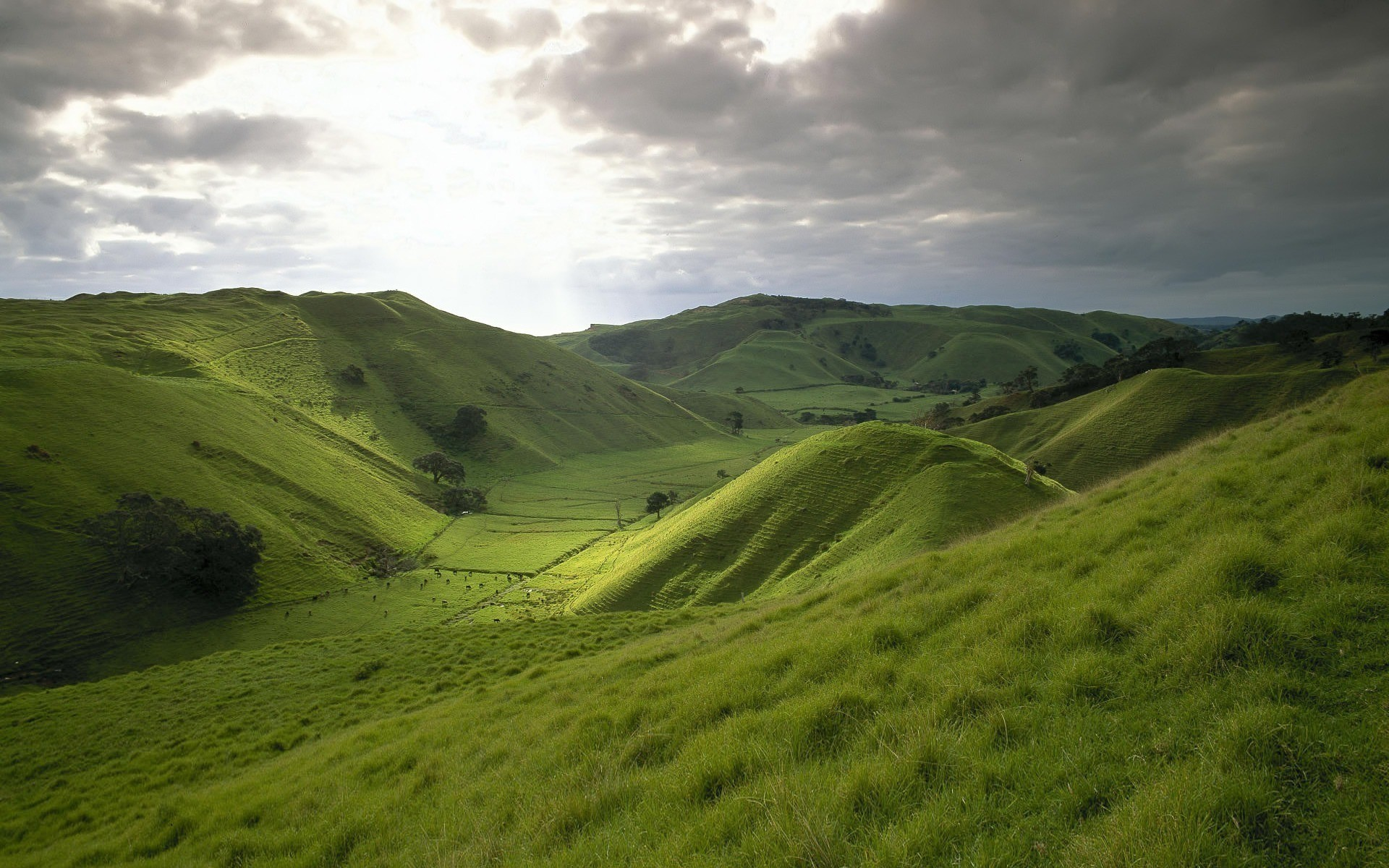 General 1920x1200 landscape hills field