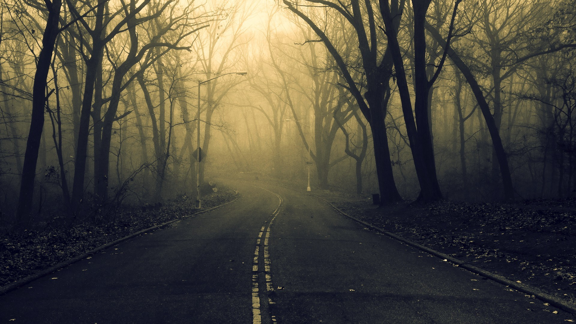 General 1920x1080 road forest spooky