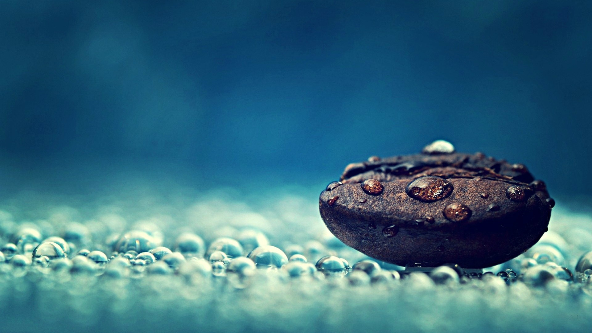 General 1920x1080 artwork macro photography closeup water drops coffee beans blue background depth of field food