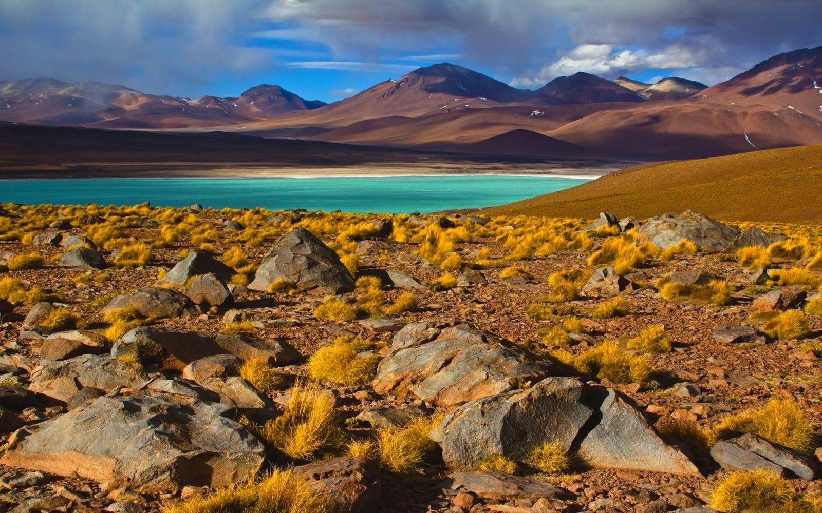 General 1600x1000 nature landscape photography lake shrubs mountains Atacama Desert Chile