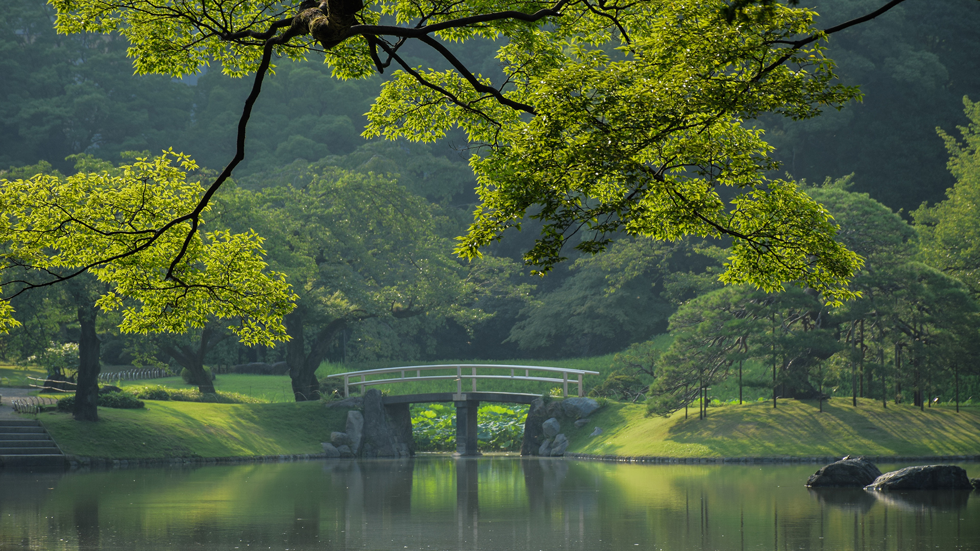 General 1920x1080 trees stairs bridge leaves grass lake forest reflection Japan Tokyo