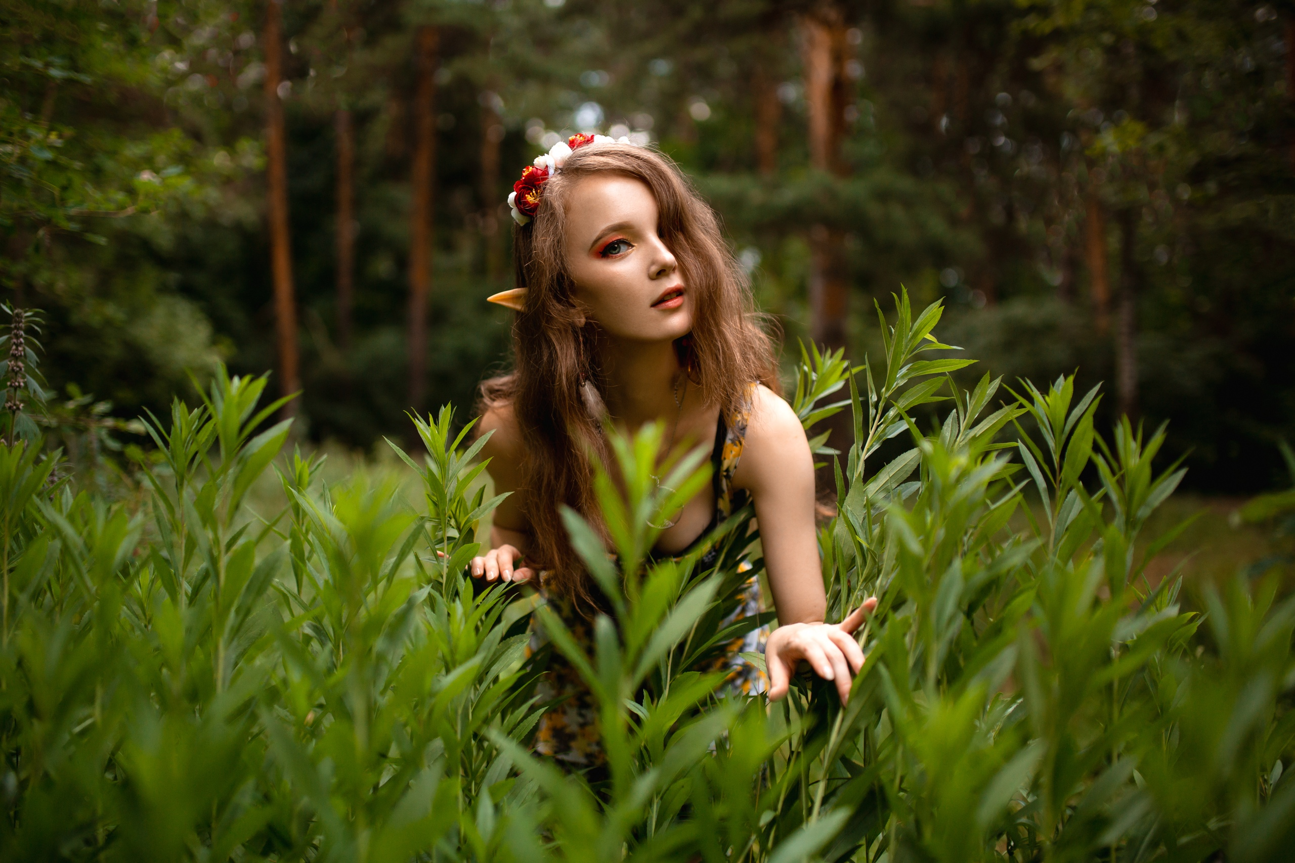 People 2560x1707 Ksana Stankevich women model brunette long hair looking at viewer makeup hair in face elves fantasy girl pointy ears cosplay forest trees plants bokeh cleavage necklace dress flower in hair depth of field portrait outdoors women outdoors