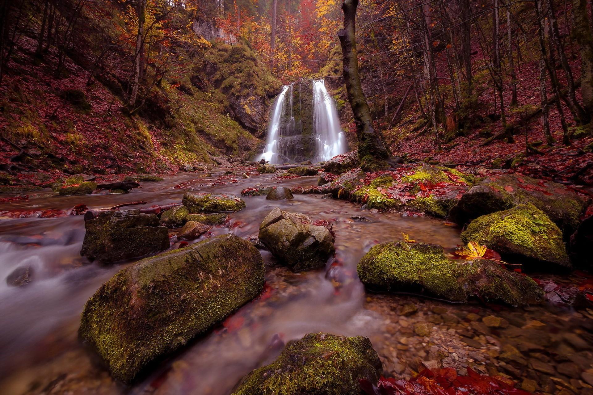 General 1920x1279 landscape waterfall nature creeks rocks moss fall fallen leaves forest