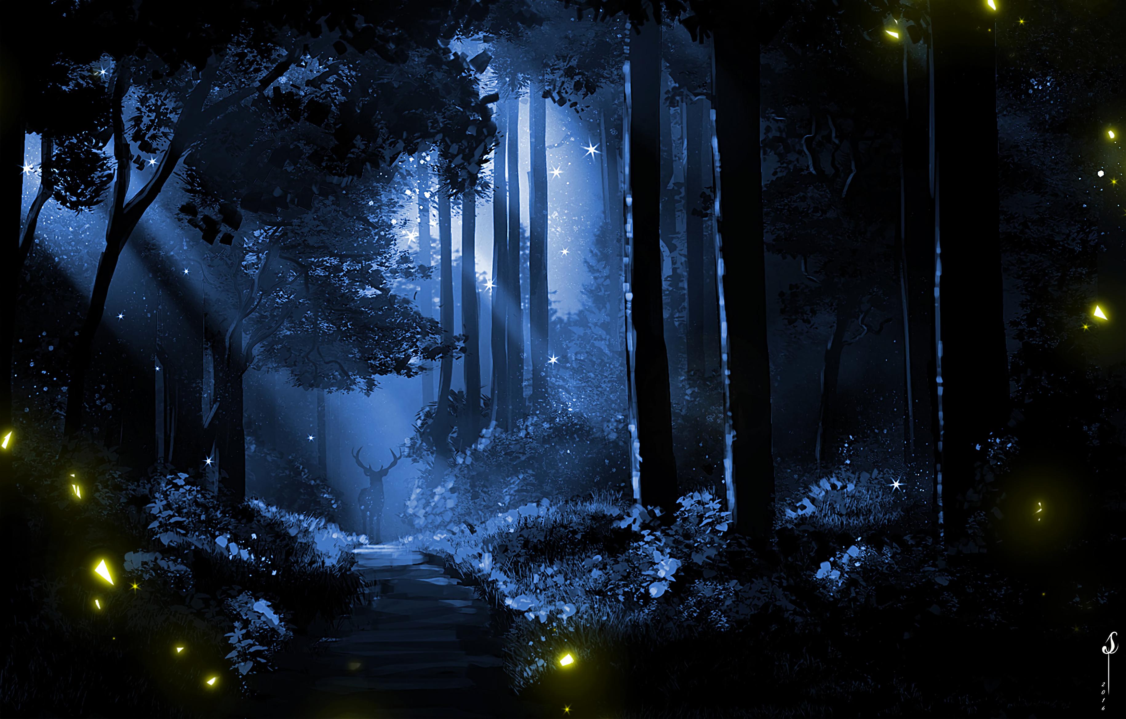 General 3660x2338 digital digital art artwork forest nature lights night night view moon rays wood landscape dark silhouette trees