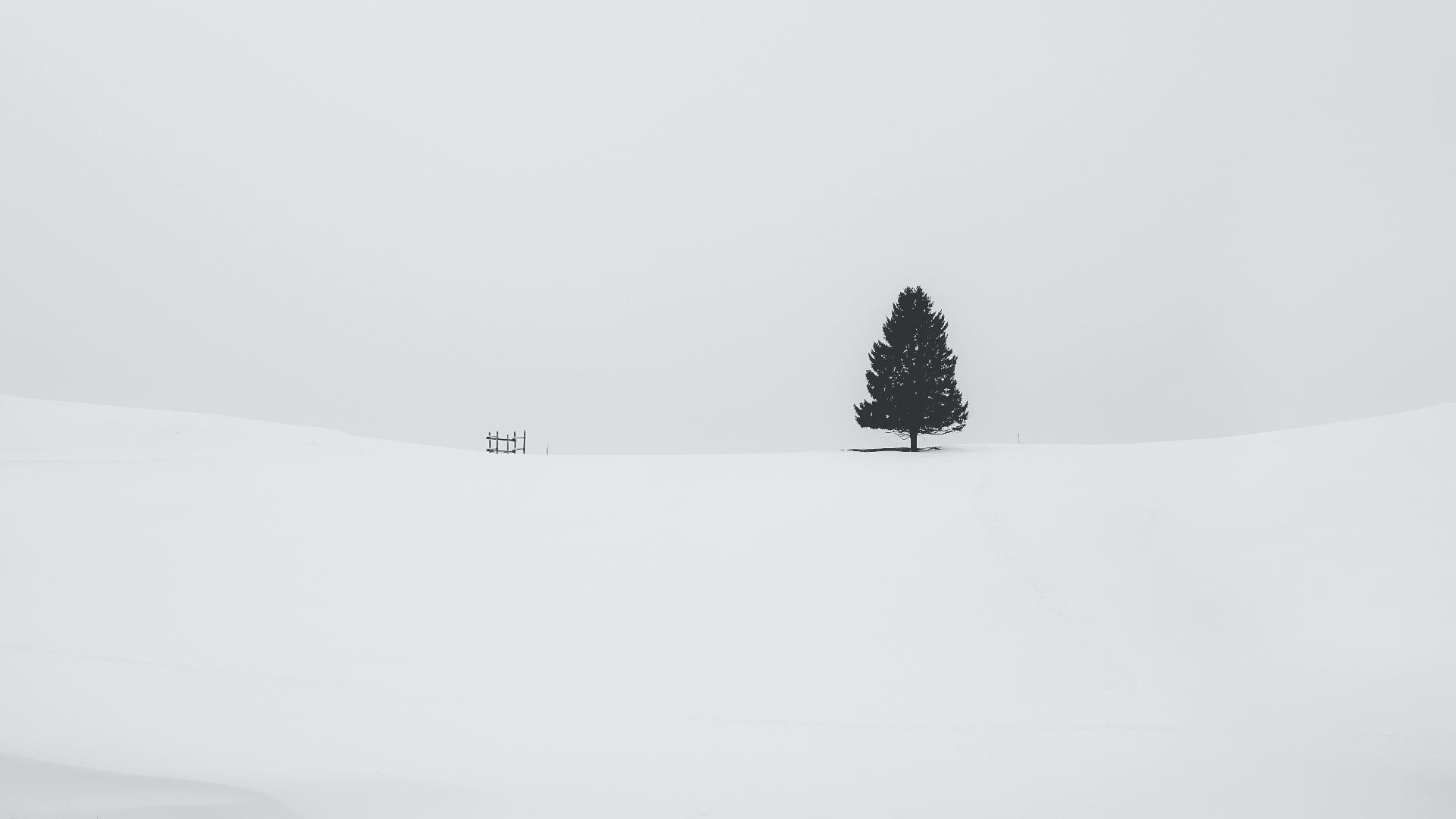 General 1920x1080 landscape trees snow winter