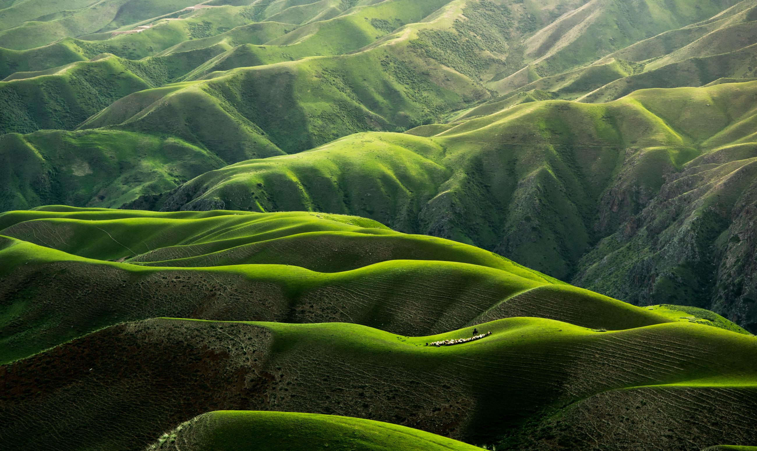 General 2600x1548 hills grass nature China green shadow