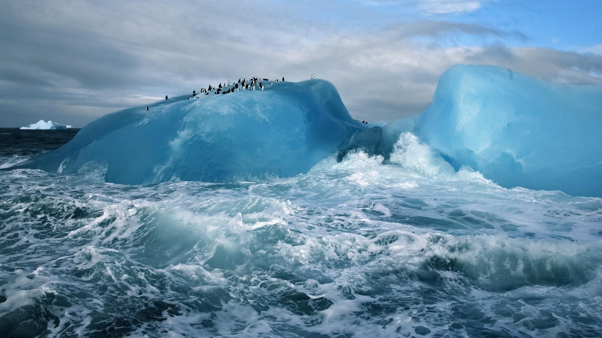 General 1920x1080 nature landscape winter iceberg sea clouds Arctic penguins animals waves