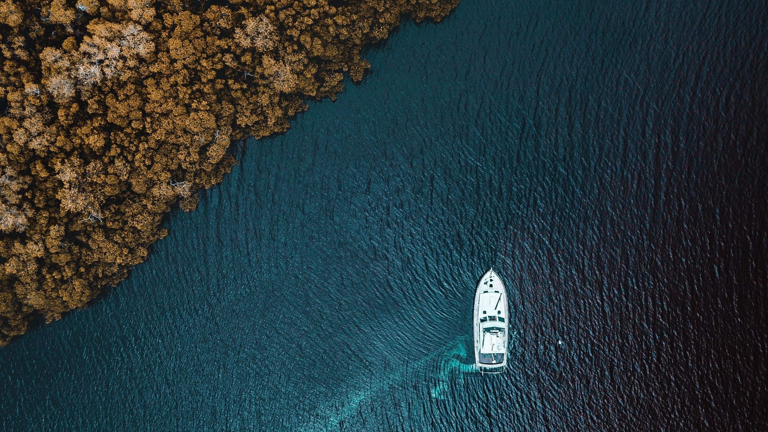 General 2560x1440 aerial sea boat vehicle water trees drone photo top view aerial view forest bird's eye view solice