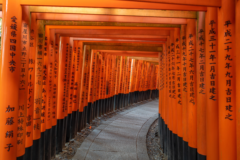 General 6000x4000 Fushimi Inari-taisha Kyoto Japan torii Asian architecture pathway Asia