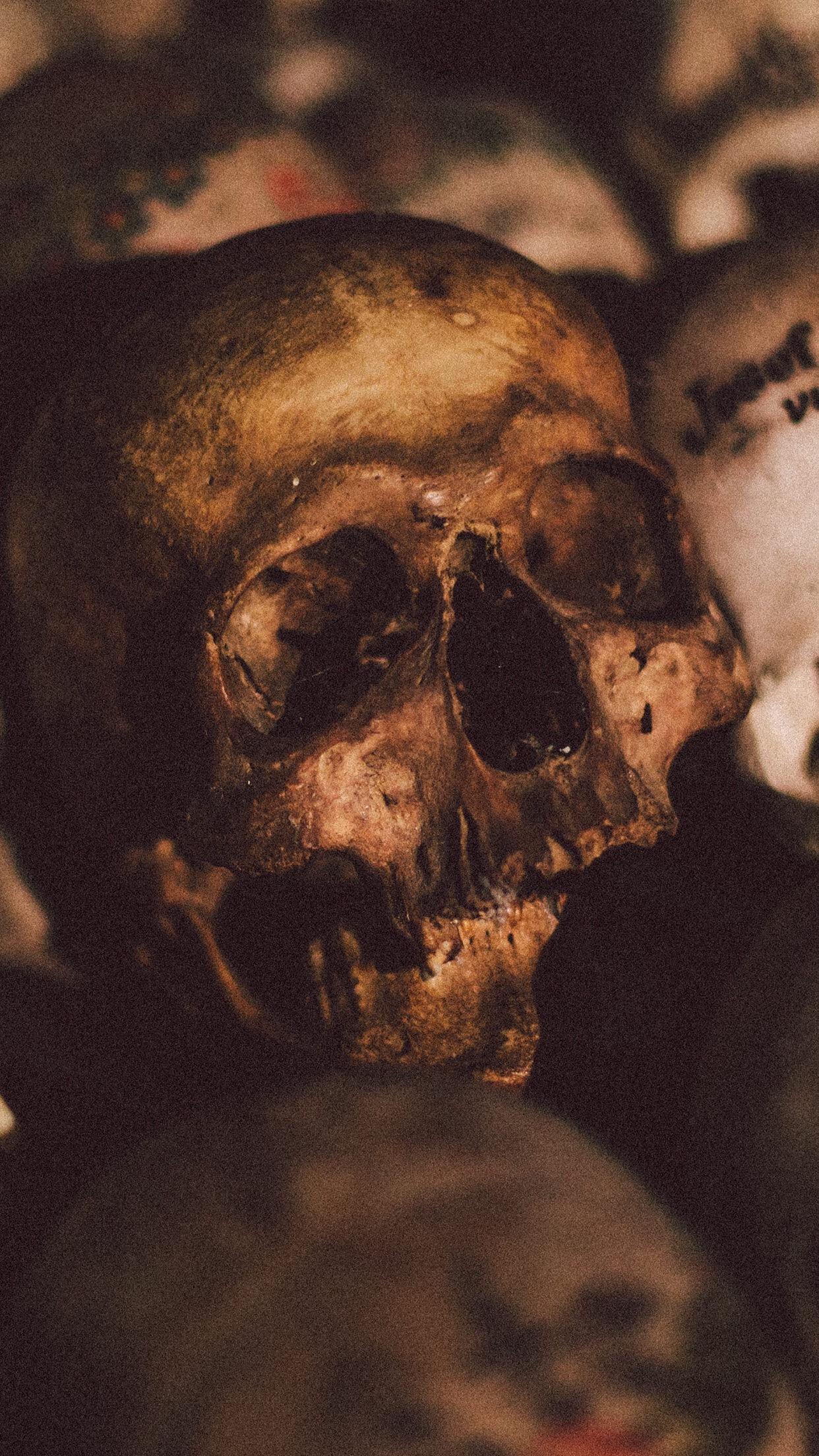 General 1242x2208 vertical skull bones