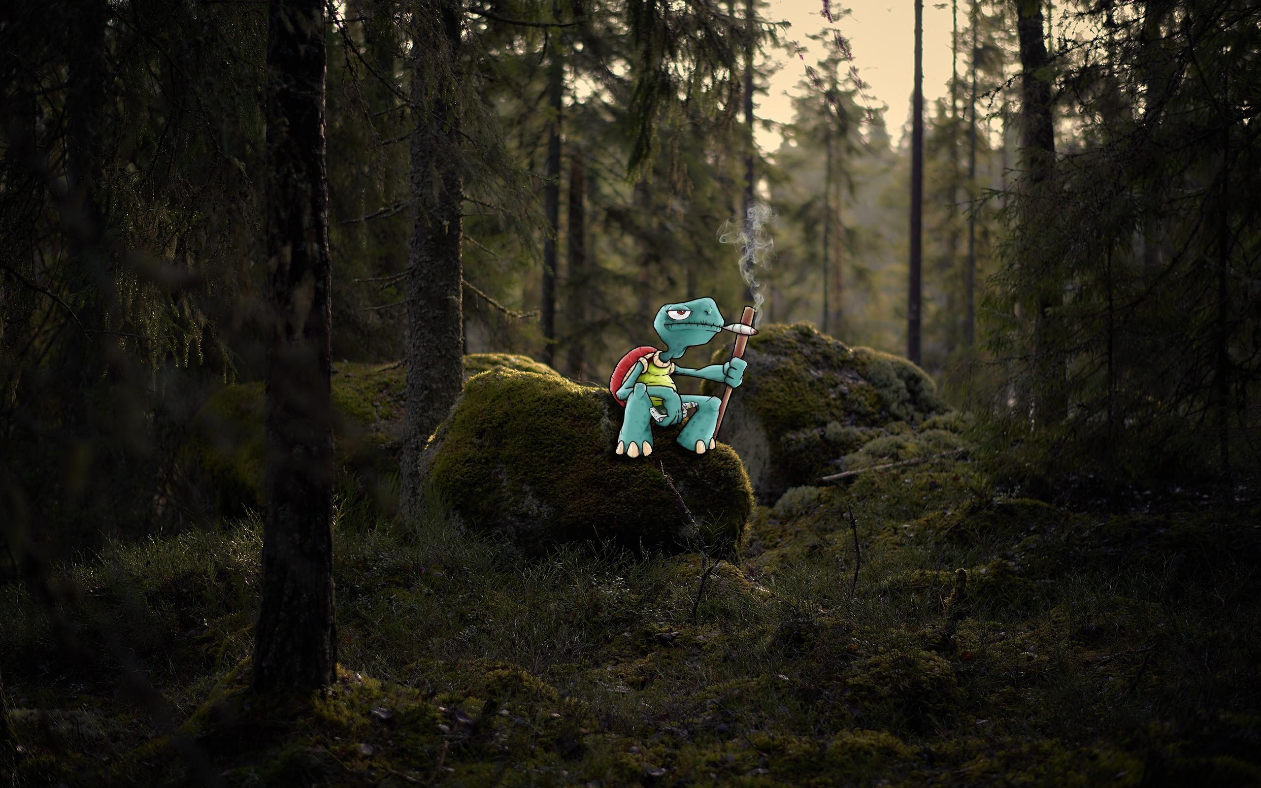 General 2560x1600 tortoises forest smoking moss green