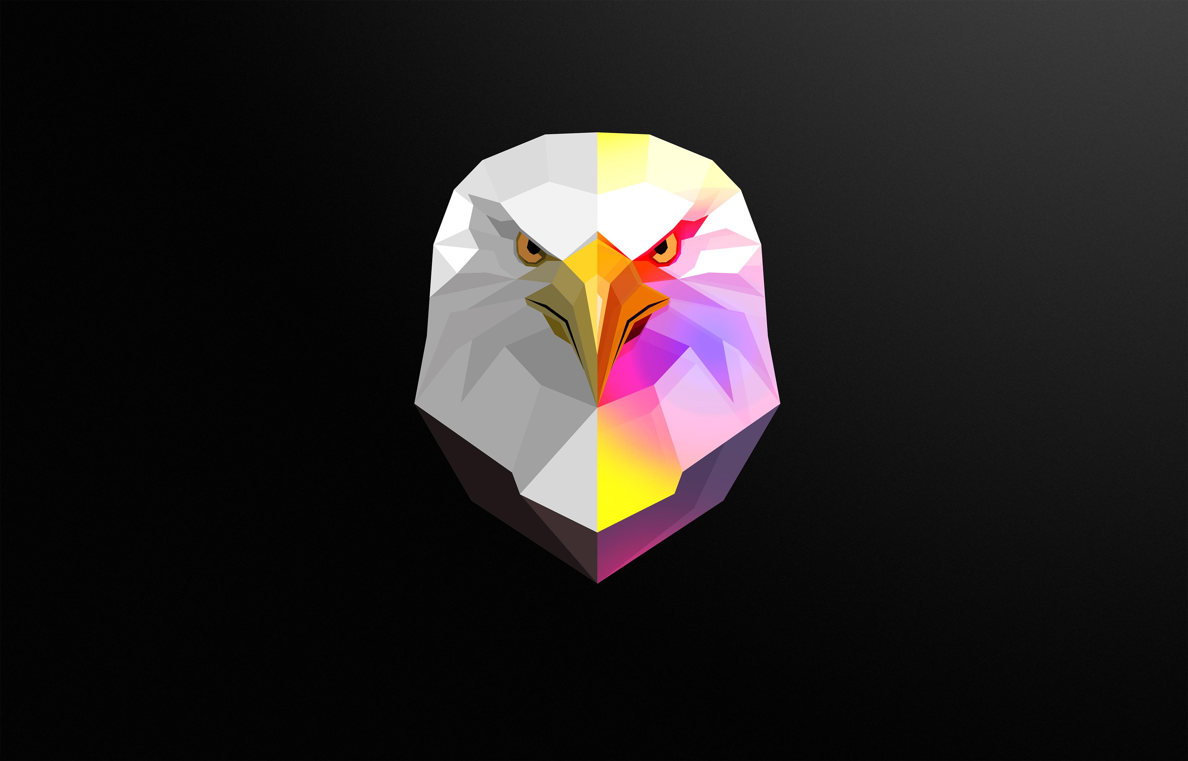 General 3840x2460 byrotek  abstract animals eagle dark digital art minimalism birds