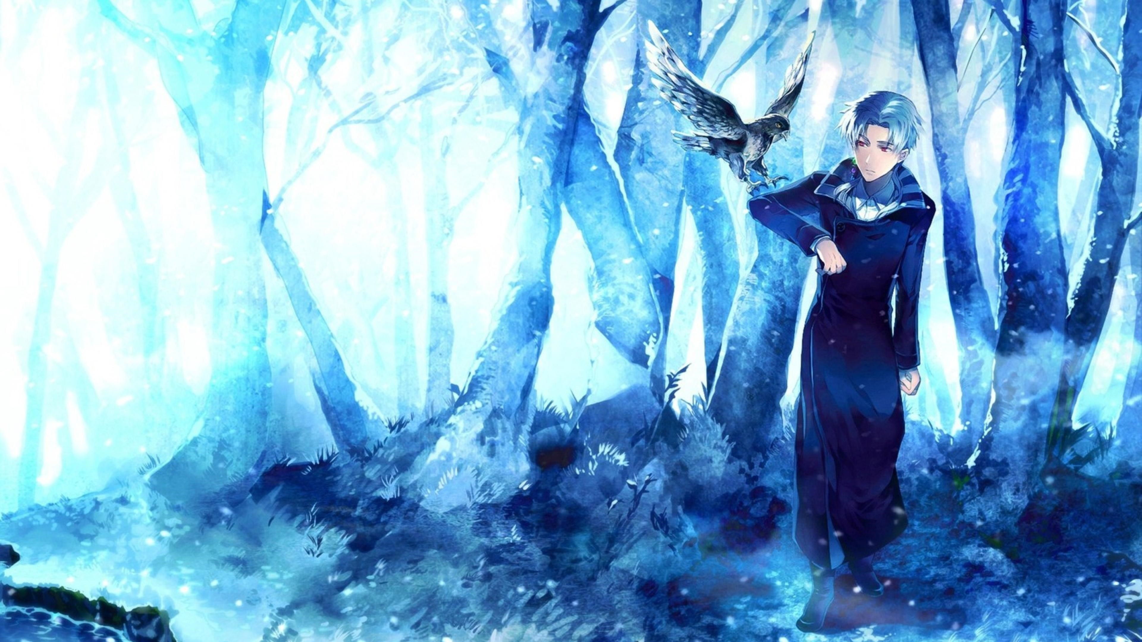General 3840x2160 anime birds artwork fantasy art