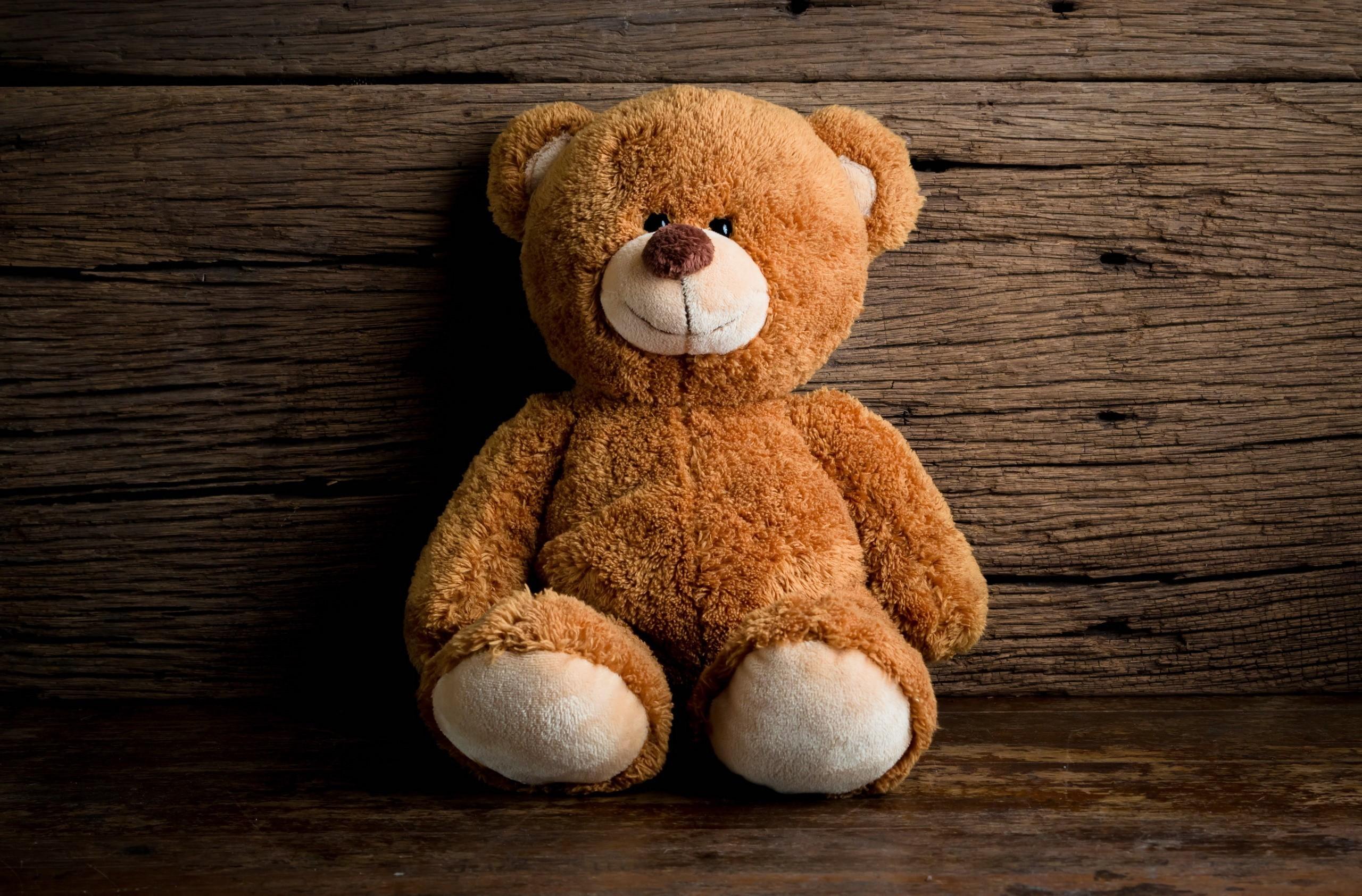 General 2560x1685 toys sitting portrait teddy bears model on the floor