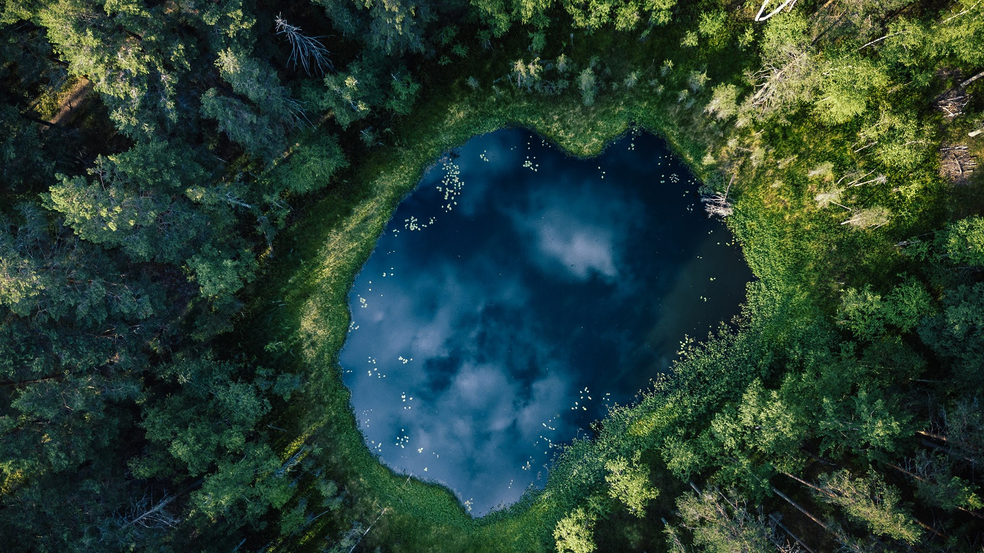 General 1920x1080 nature lake forest grass aerial view Finland reflection clouds landscape water trees top view