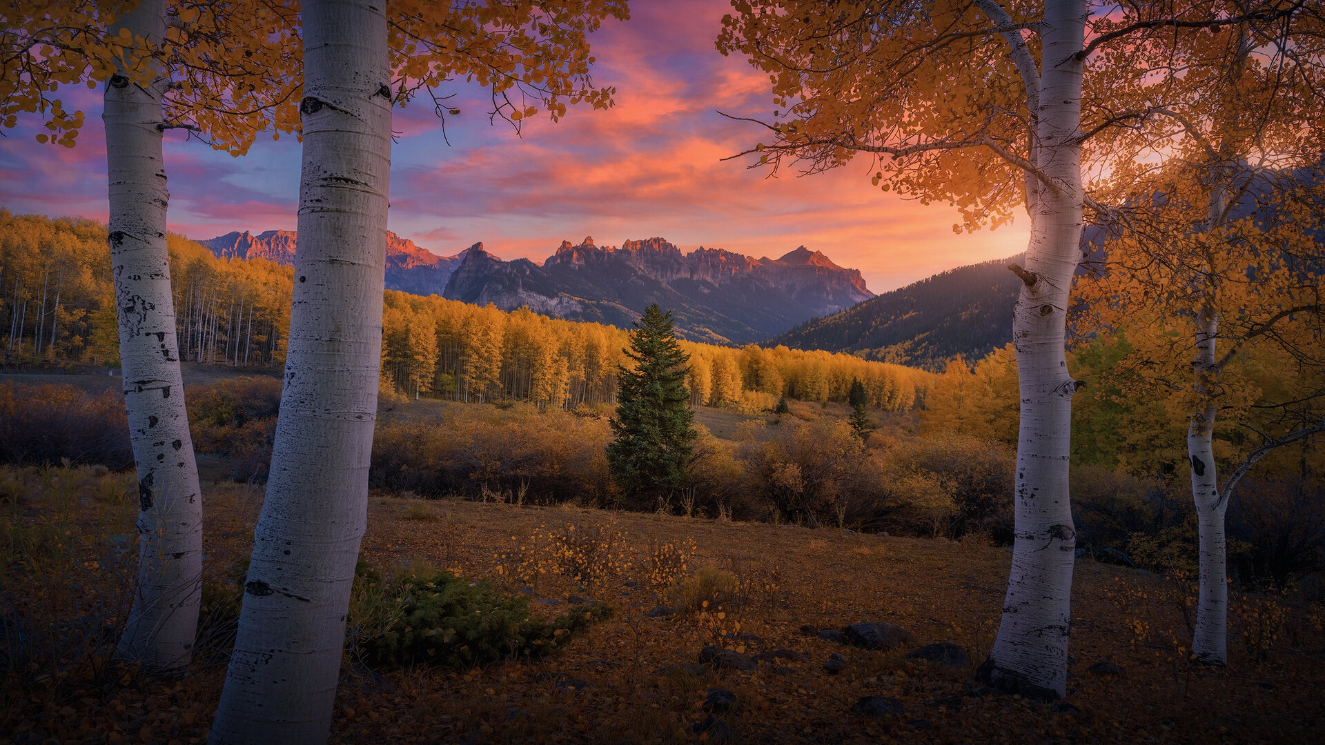 General 1920x1080 nature landscape sunset fall trees sky clouds mountains birch