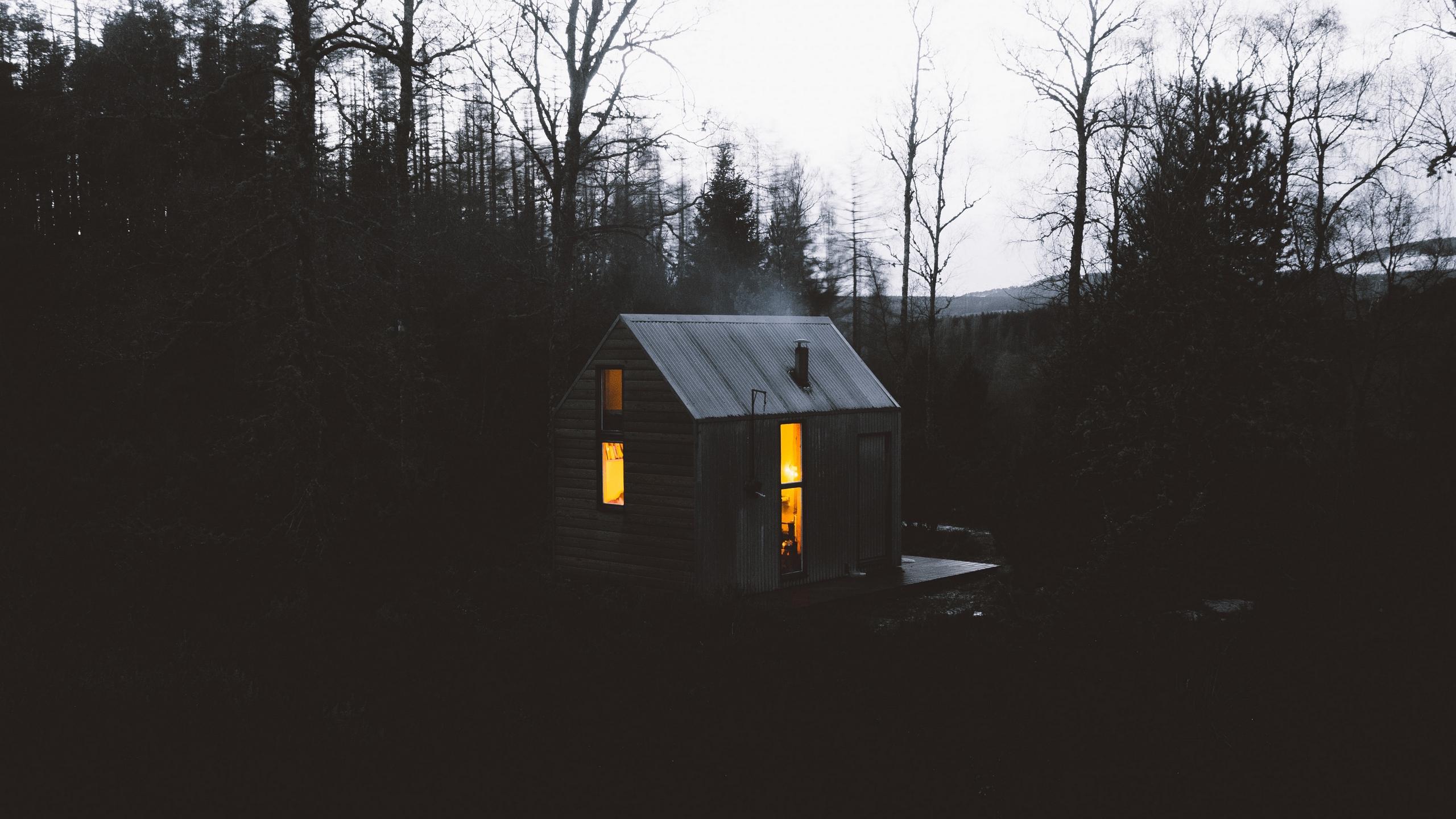 General 2560x1440 landscape trees forest house shack dark filter cabin deep forest