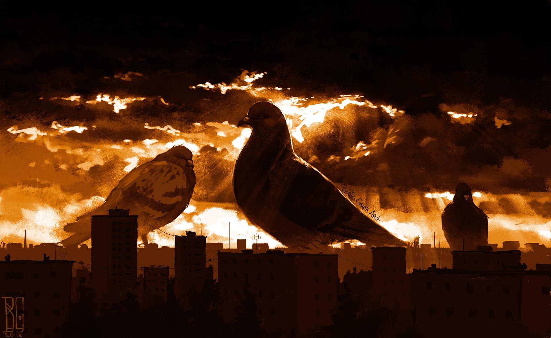 General 1920x1177 dark sky cityscape artwork Boris Groh pigeons