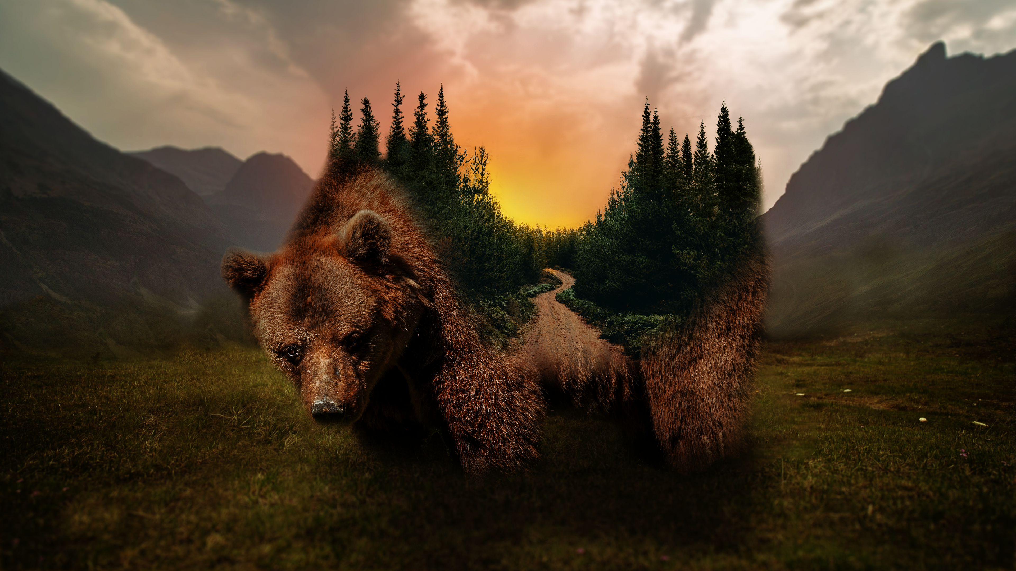 General 3840x2160 Grizzly bear forest sunset nature digital art