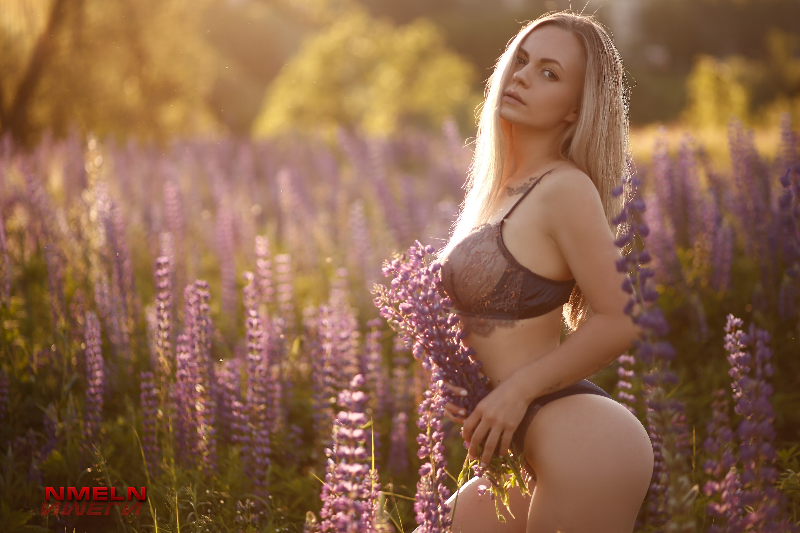 People 2560x1707 Nika Meln women blonde long hair straight hair looking at viewer tattoo lingerie bra panties nature flowers field lavender Aygul Ismagilova