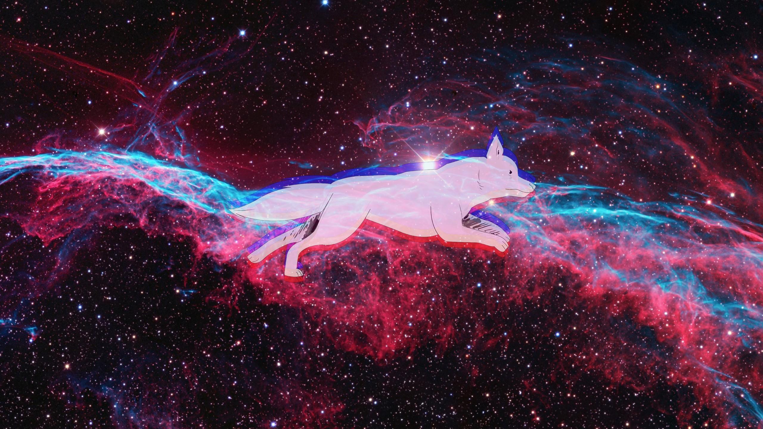 General 2560x1441 space dog space art nebula animals mammals digital art
