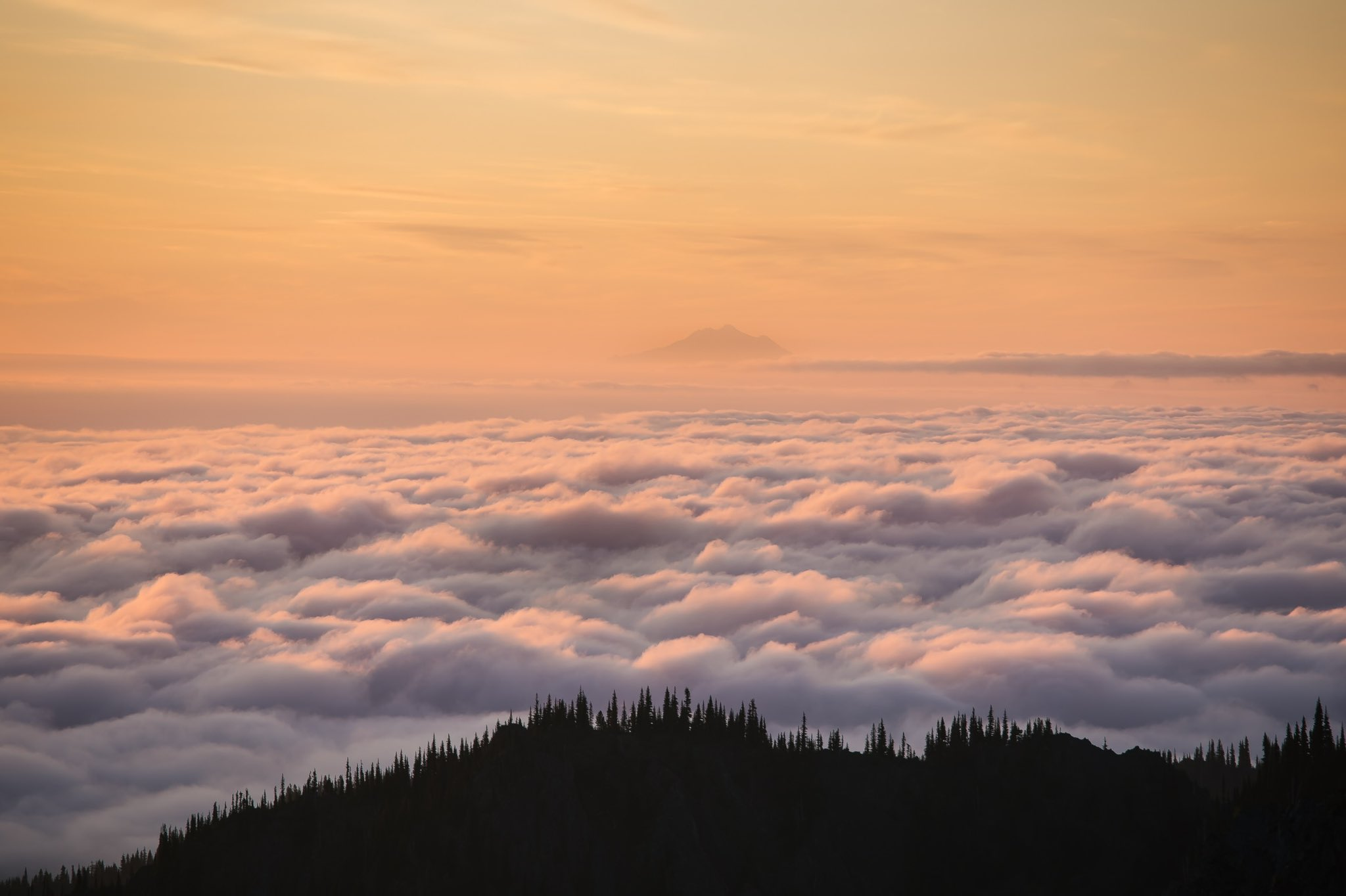 General 2048x1364 landscape nature sky clouds pine trees forest trees aerial view