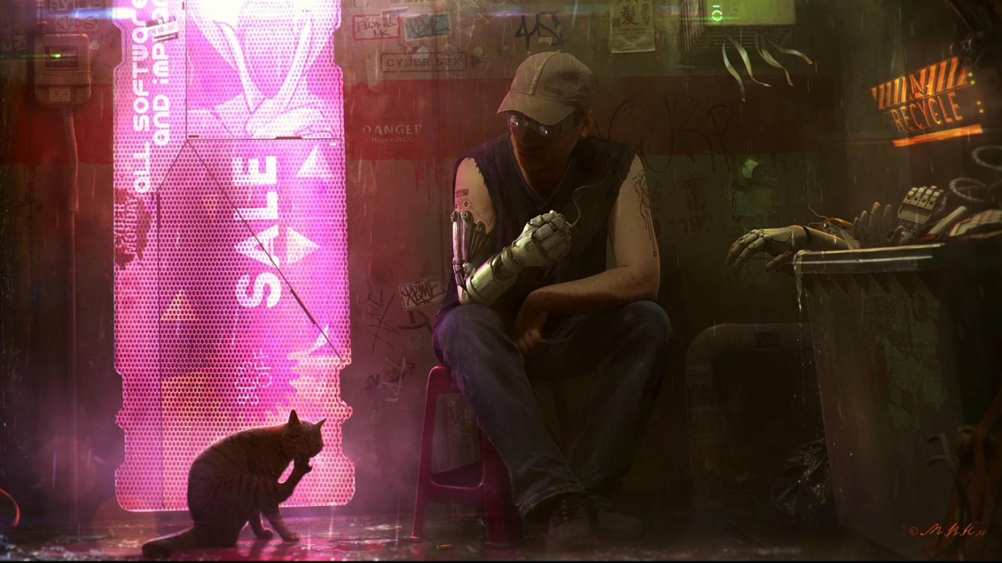 General 2048x1152 artwork fantasy art science fiction cats cyberpunk
