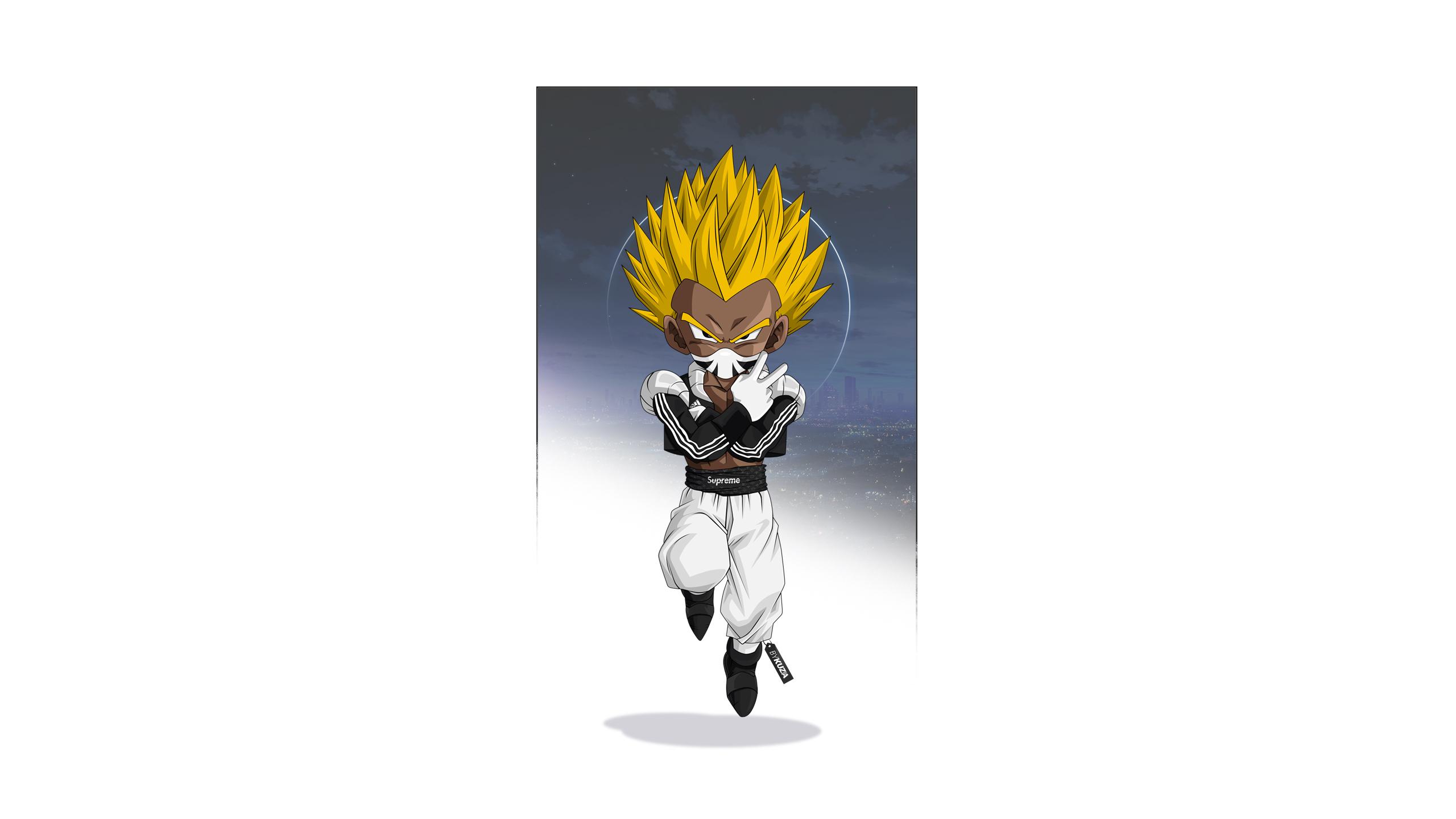 Anime 2560x1440 Gotenks Dragon Ball Z Dragon Ball illustration artwork Adidas supreme