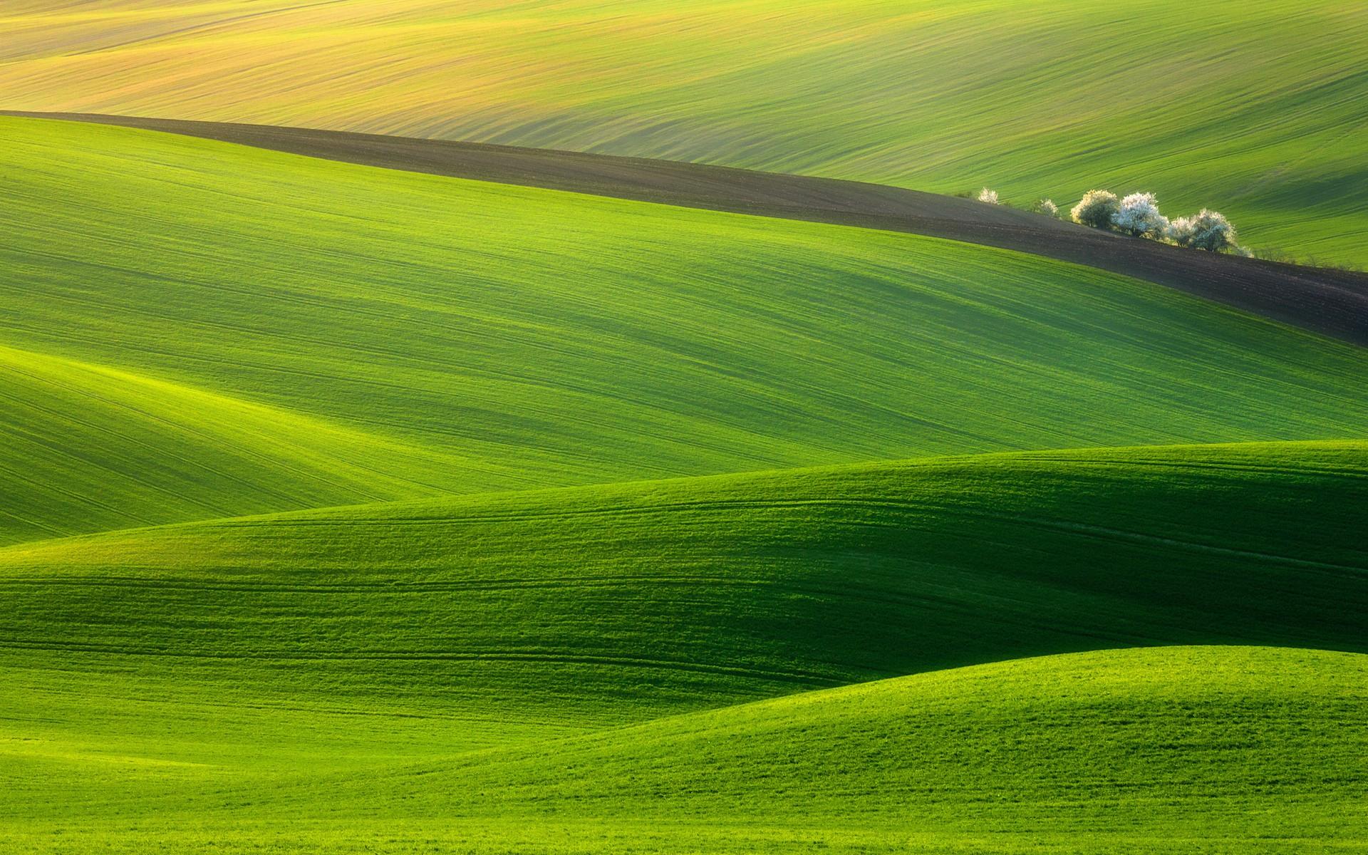 General 1920x1200 nature landscape grass field hills