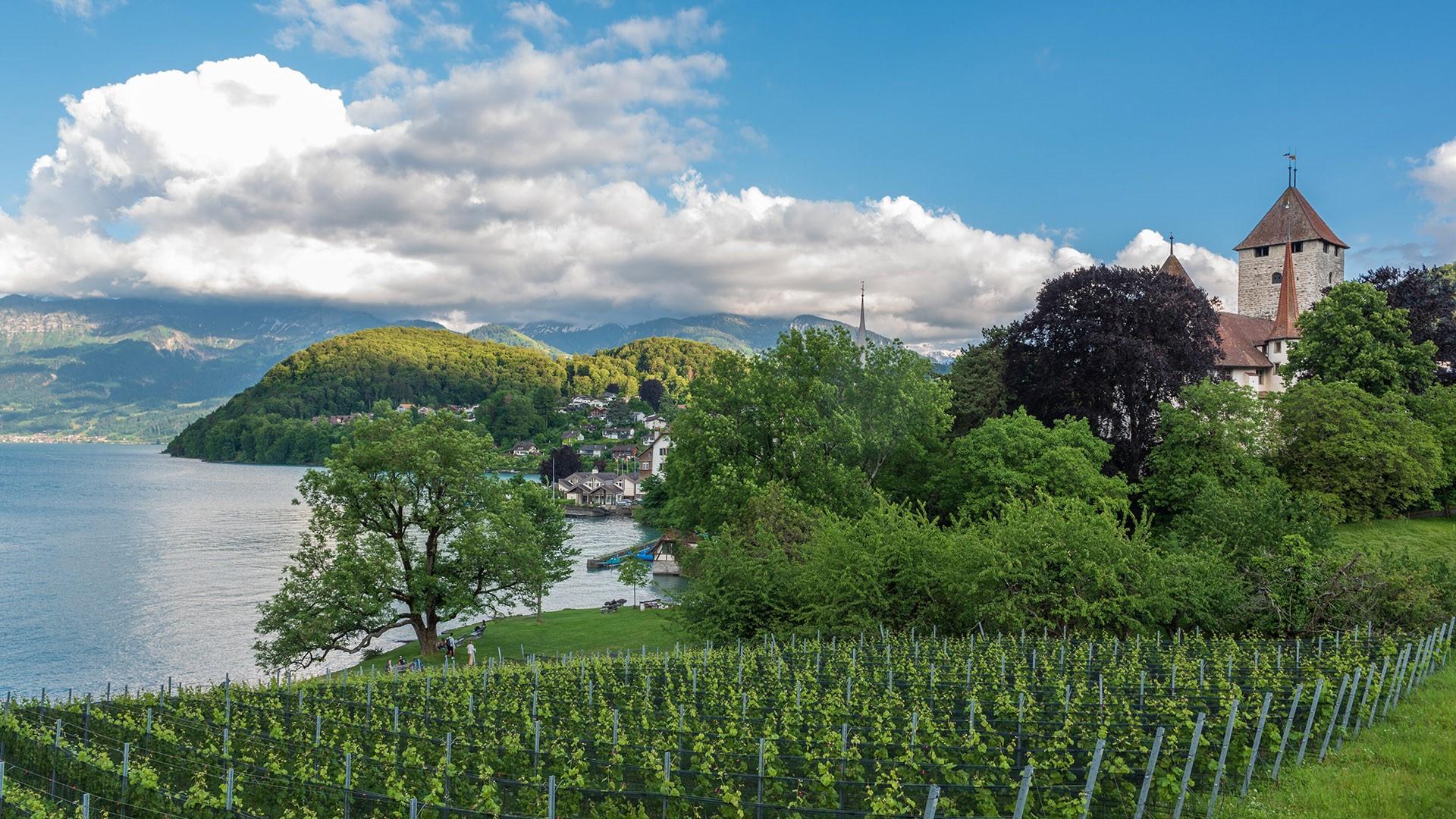 General 1920x1080 landscape water nature village vineyard mountains