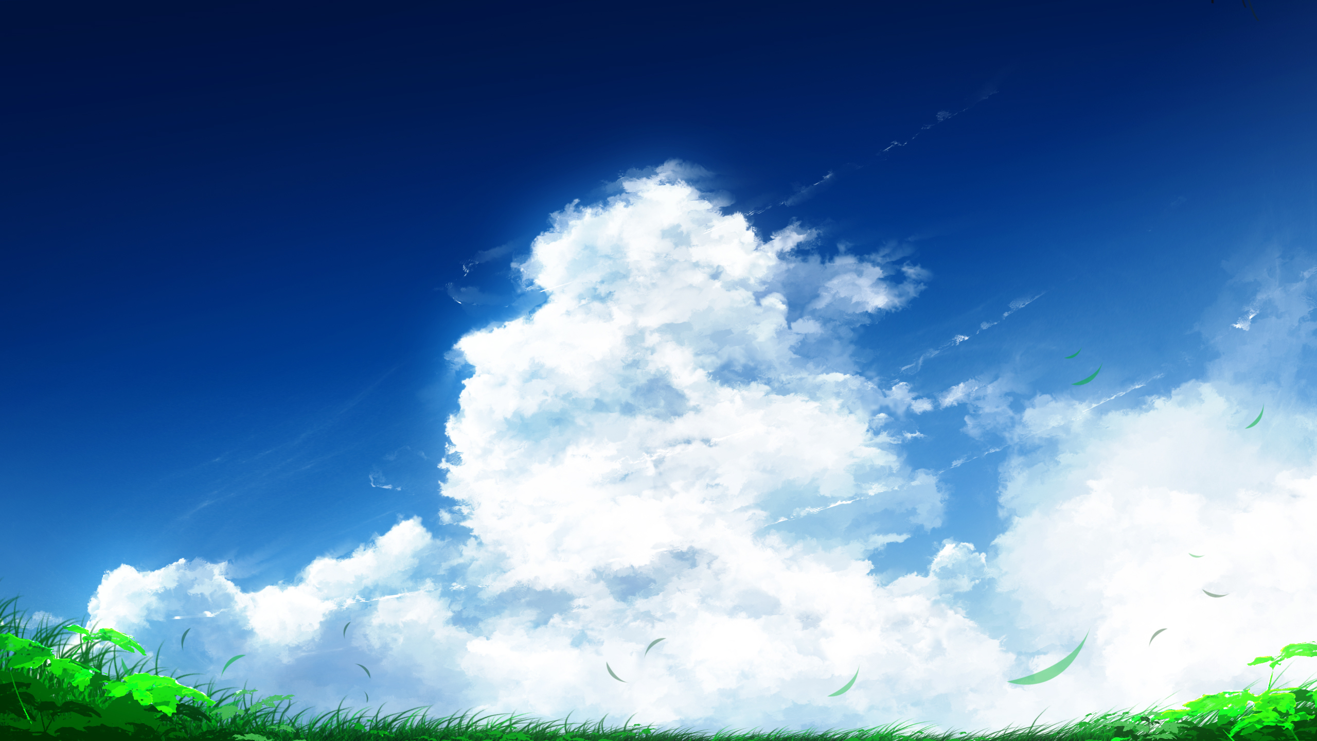 General 2560x1440 clouds sky grass artwork painting anime plants white blue